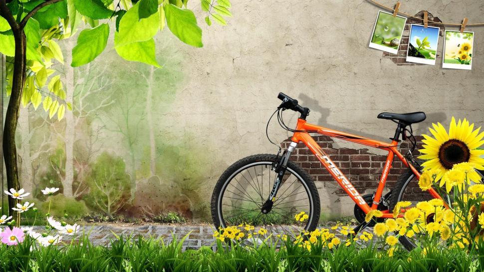 Download 3d Wallpaper Apk Spring Ride Wallpaper Nature And Landscape Wallpaper