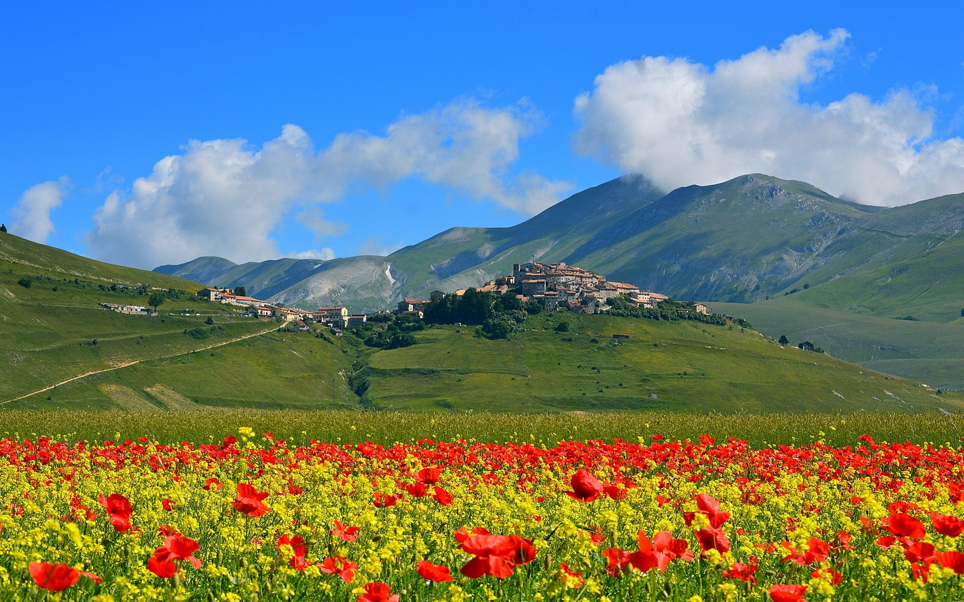 Free Wallpaper Download For Pc 3d Castelluccio Italy Mountains Poppies Flowers Village