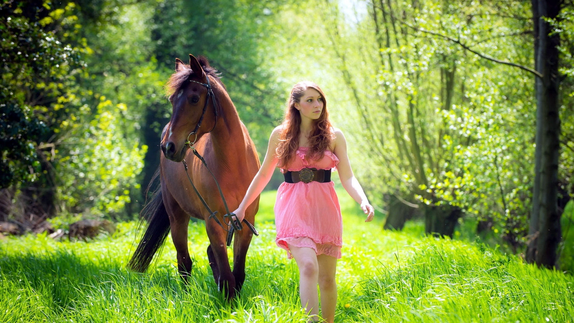 Boy And Girl Friendship Wallpapers Girl And Horse Grass Forest Wallpaper Girls