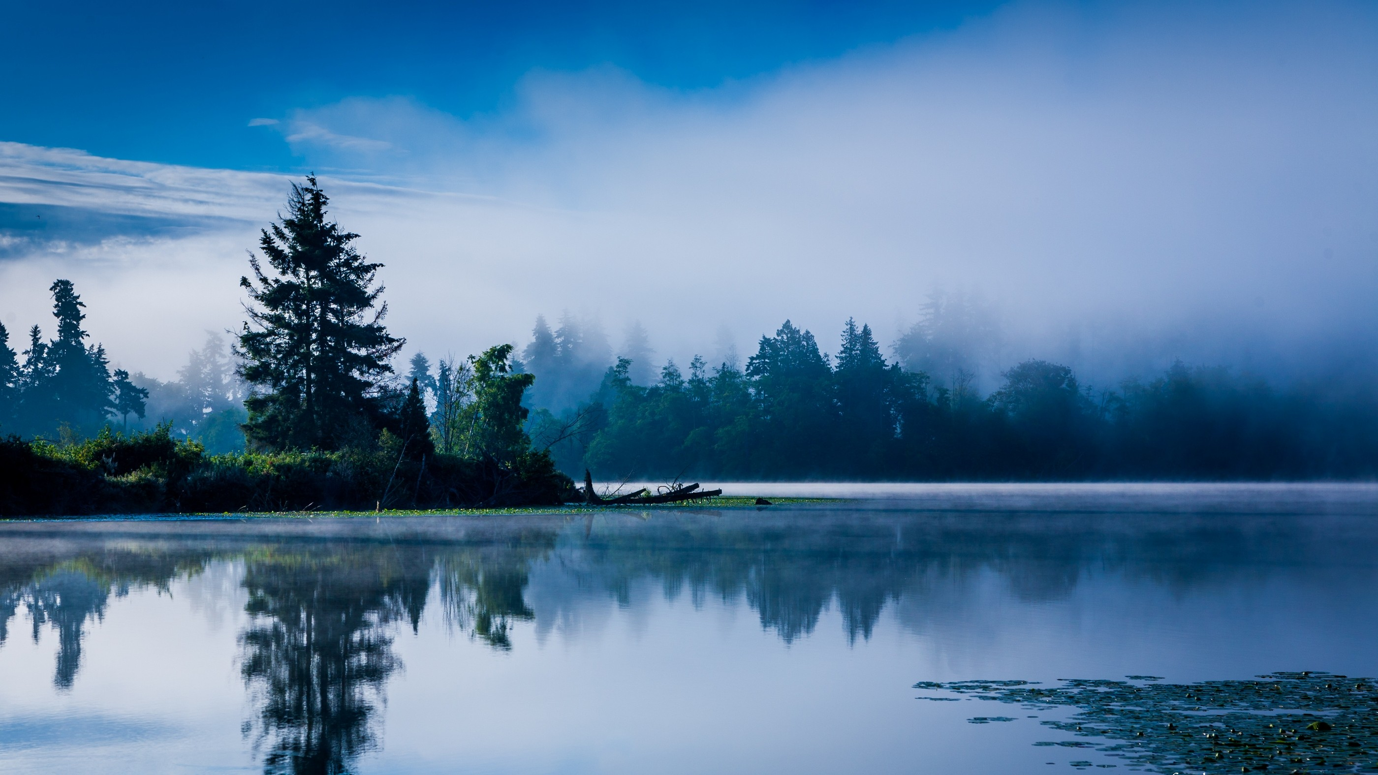 Microsoft Fall Wallpaper Lake Mist Nature Landscape Blue Calm Morning Trees