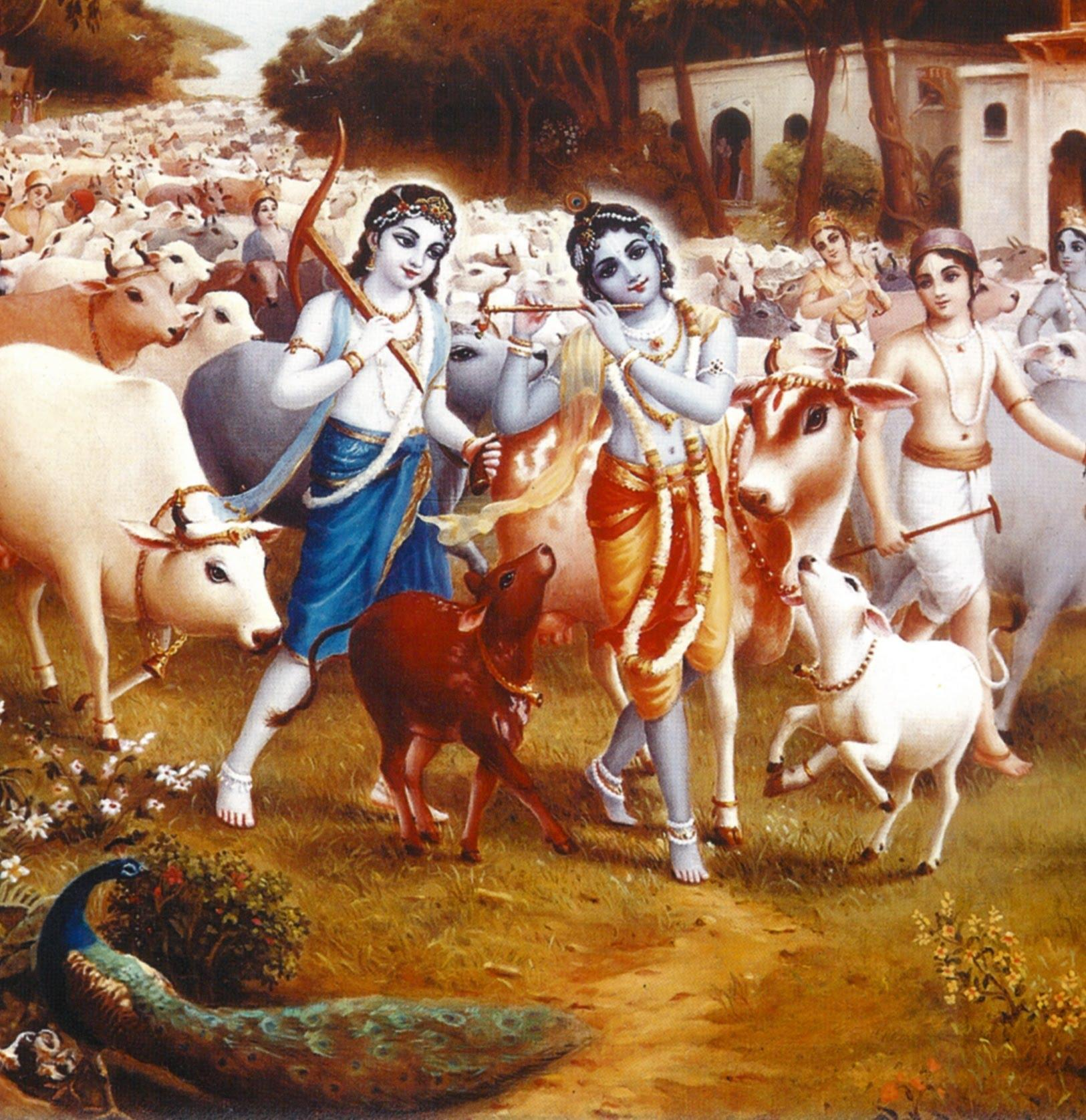 Animated Hd Wallpapers 1080p Free Download Download Krishna With Cows Janmashtami Wallpapers For