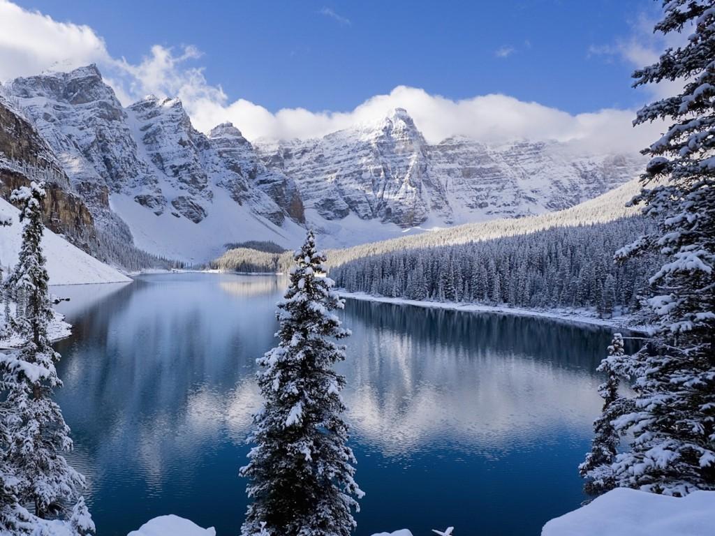 3d Wallpaper Free Download African Grey Snow Covered Mountains Wallpaper Free Downloads