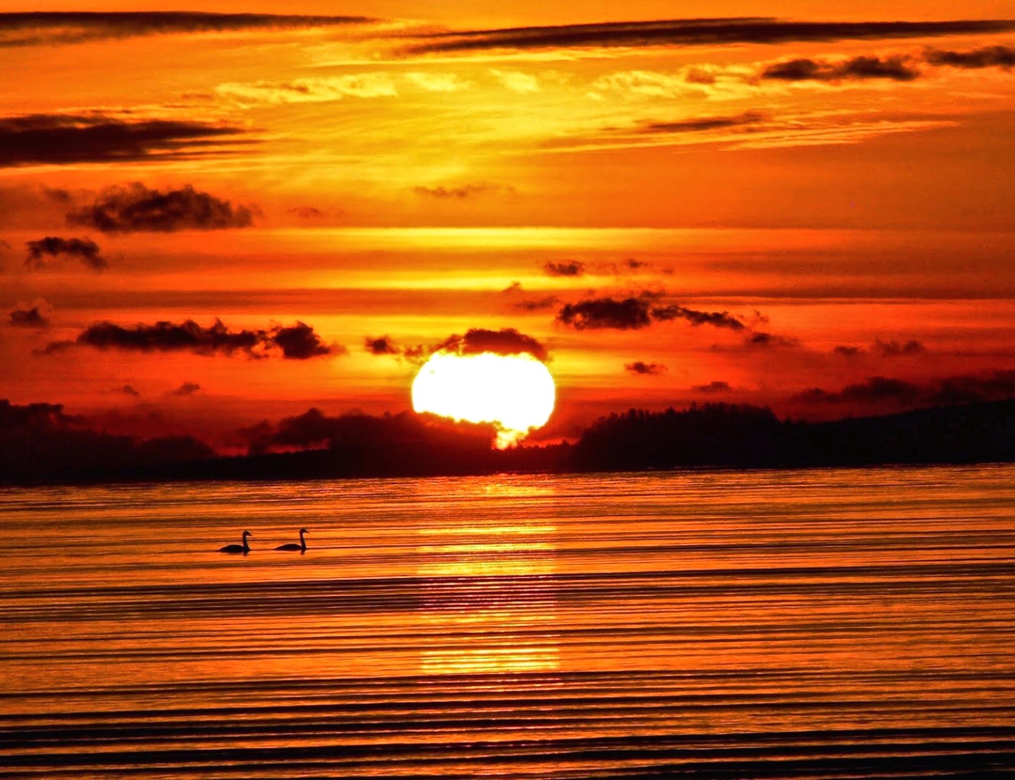 Katrina 3d Wallpaper Tranquil Sunset Wallpaper Free Hd Sunset Backgrounds