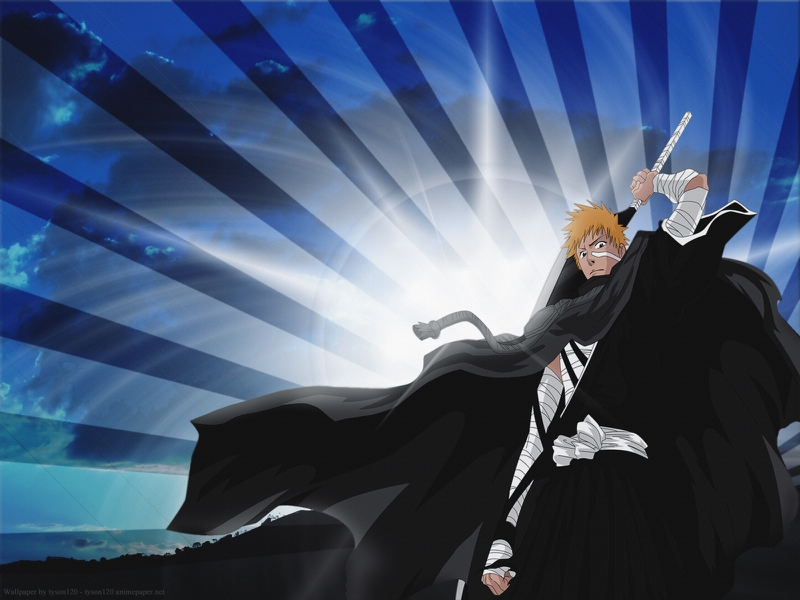 Animals And Birds Wallpaper A Soul Reaper Others Ichigo Kurosaki Substitute Soul