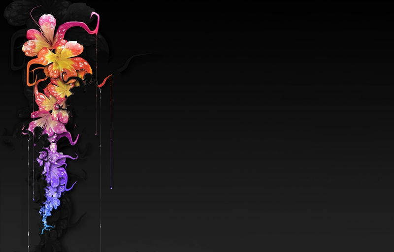 Falling Snow Live Wallpaper For Iphone Abstract Flowers Floral Black Background 1600x1024