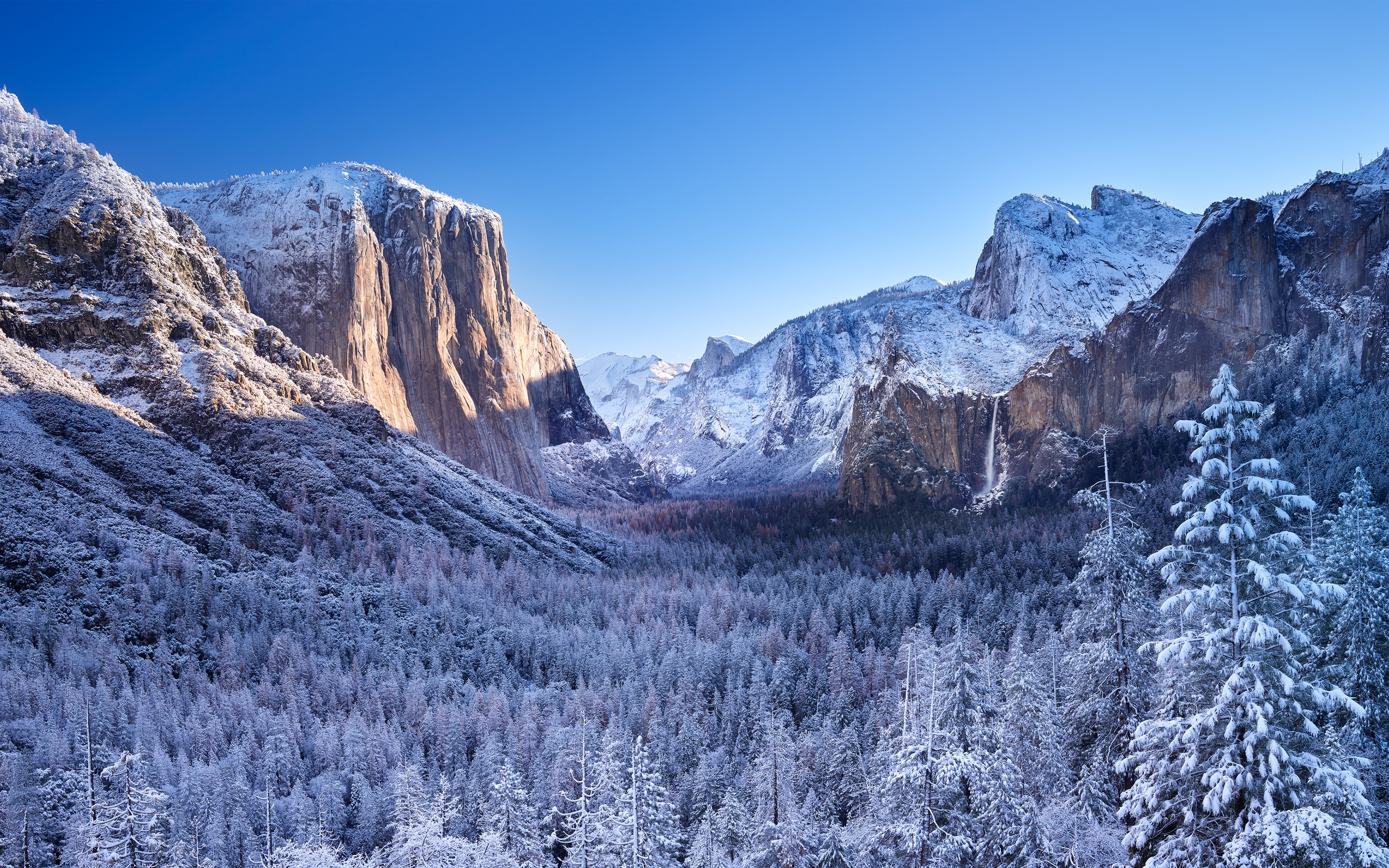 4k Hdr Wallpaper Iphone X Download 2880x1800 Yosemite National Park Trees Snow