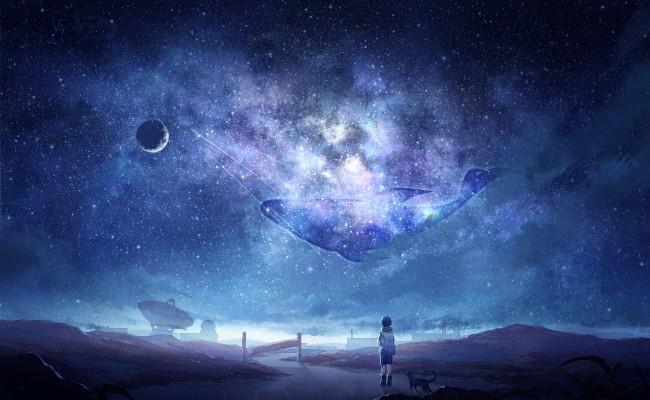 Iphone 4s Galaxy Wallpaper Wallpaper Anime Sky Milky Way Stars Anime Boy Dog