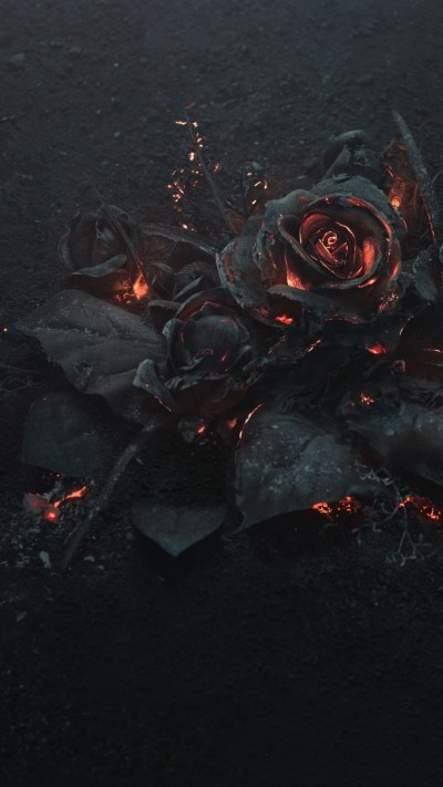 Download 1080x1920 Rose Ashes, Fire, Black, Dark Theme Wallpapers for iPhone 8, iPhone 7 Plus ...