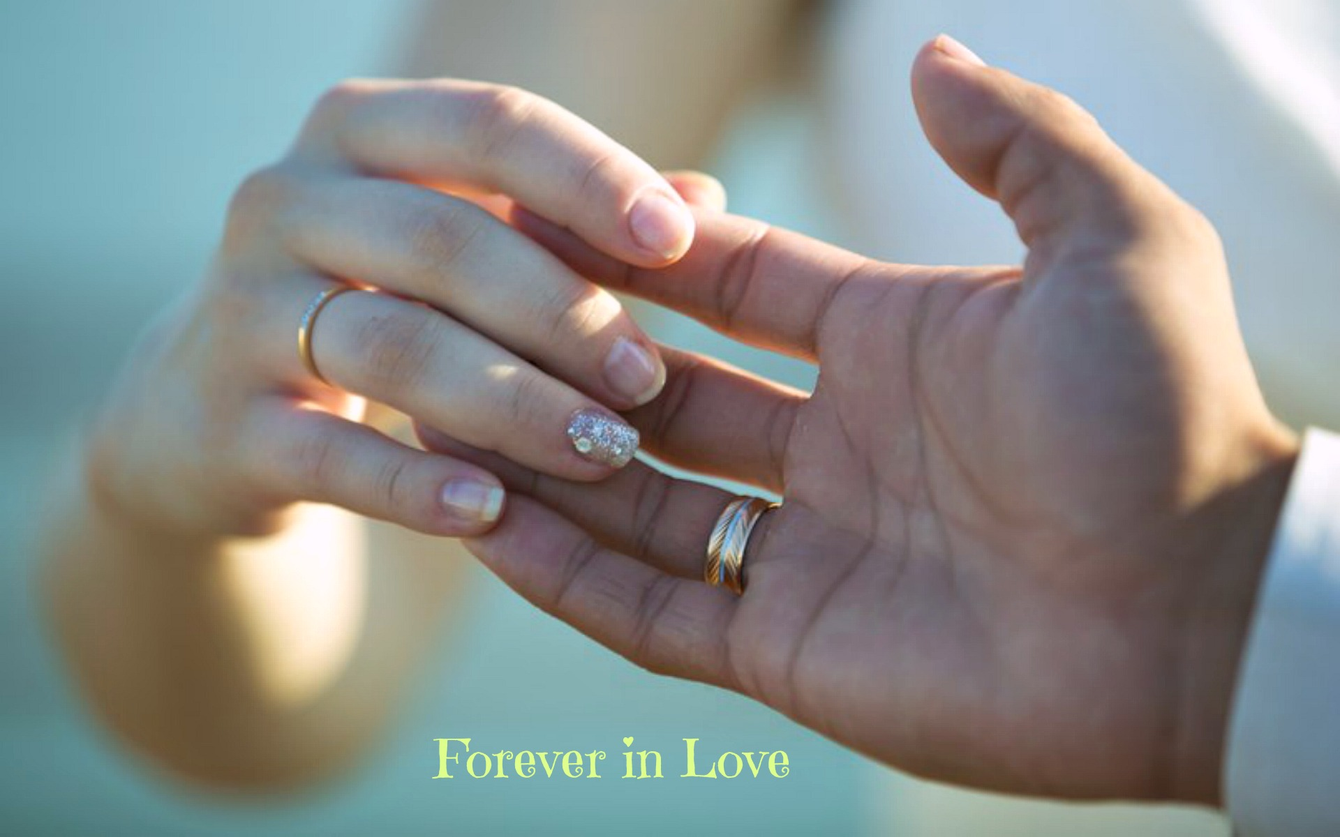 Cute Together Forever Wallpaper Forever In Love Rings Wedding Hands Hd Wallpaper 15