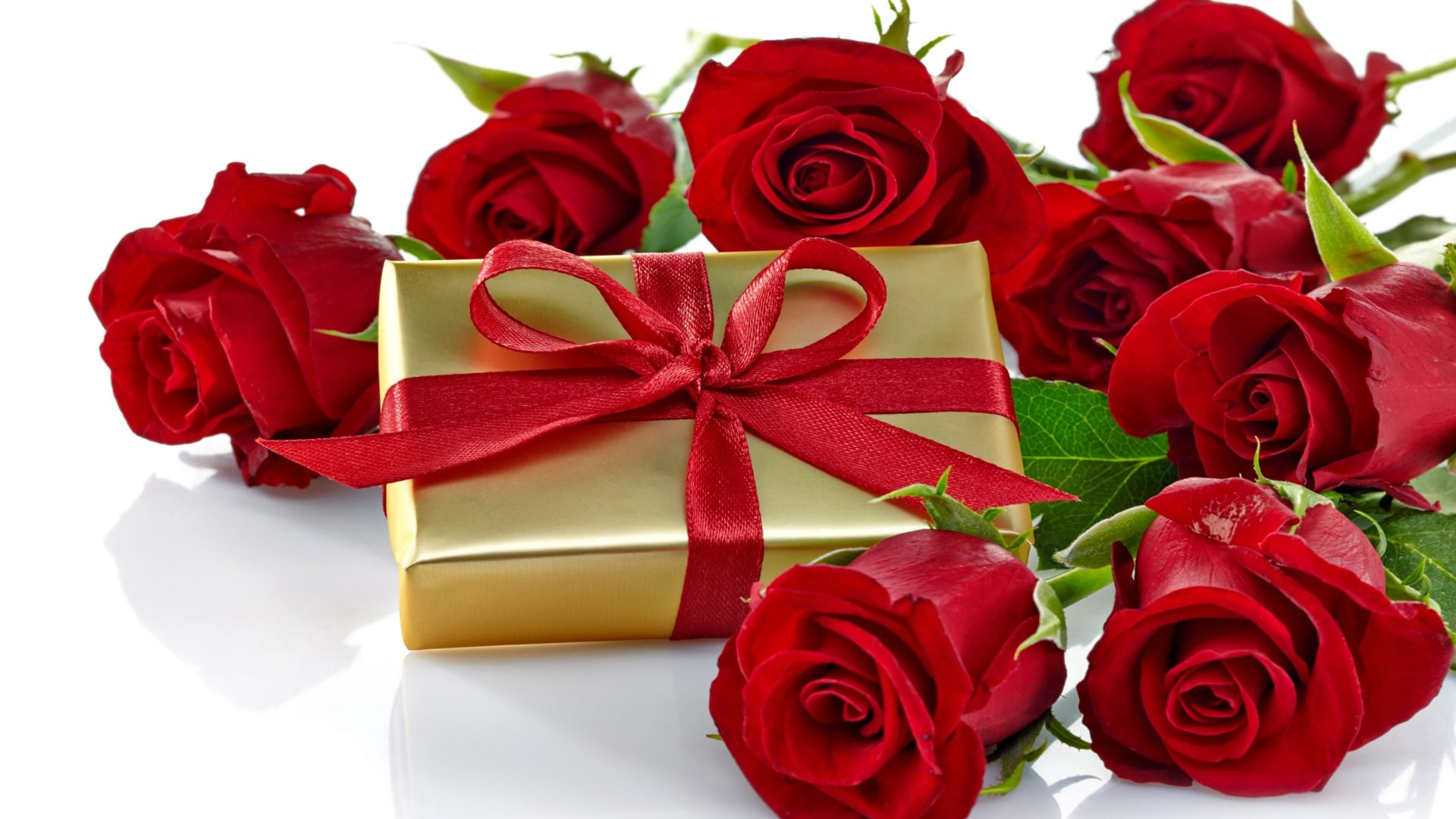 Cute Roses Wallpapers With Wordings Roses Romantic Love Gift Bow Nature Flowers Hd Wallpaper