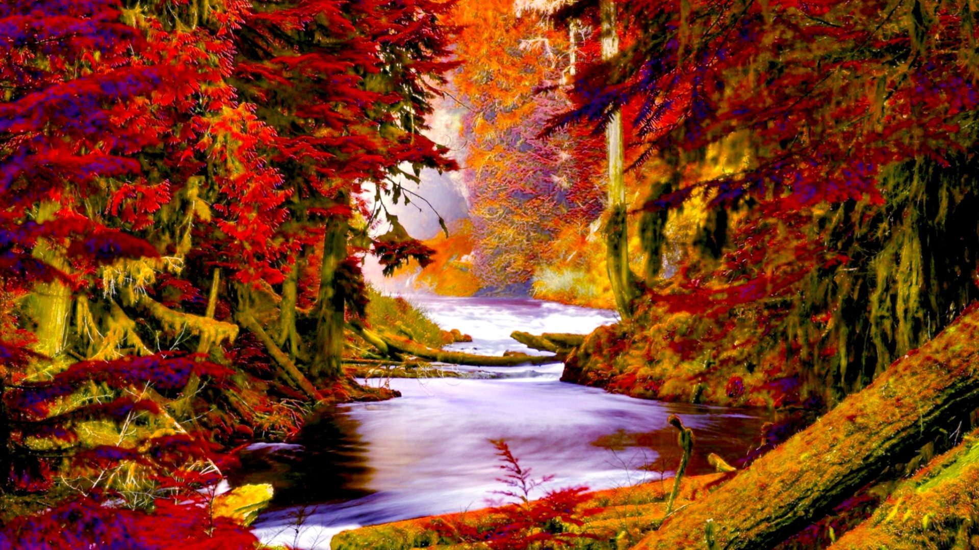 Fall Foliage Wallpaper For Iphone Autumn Forest Creek Wide Wallpaper 503570 Wallpapers13 Com