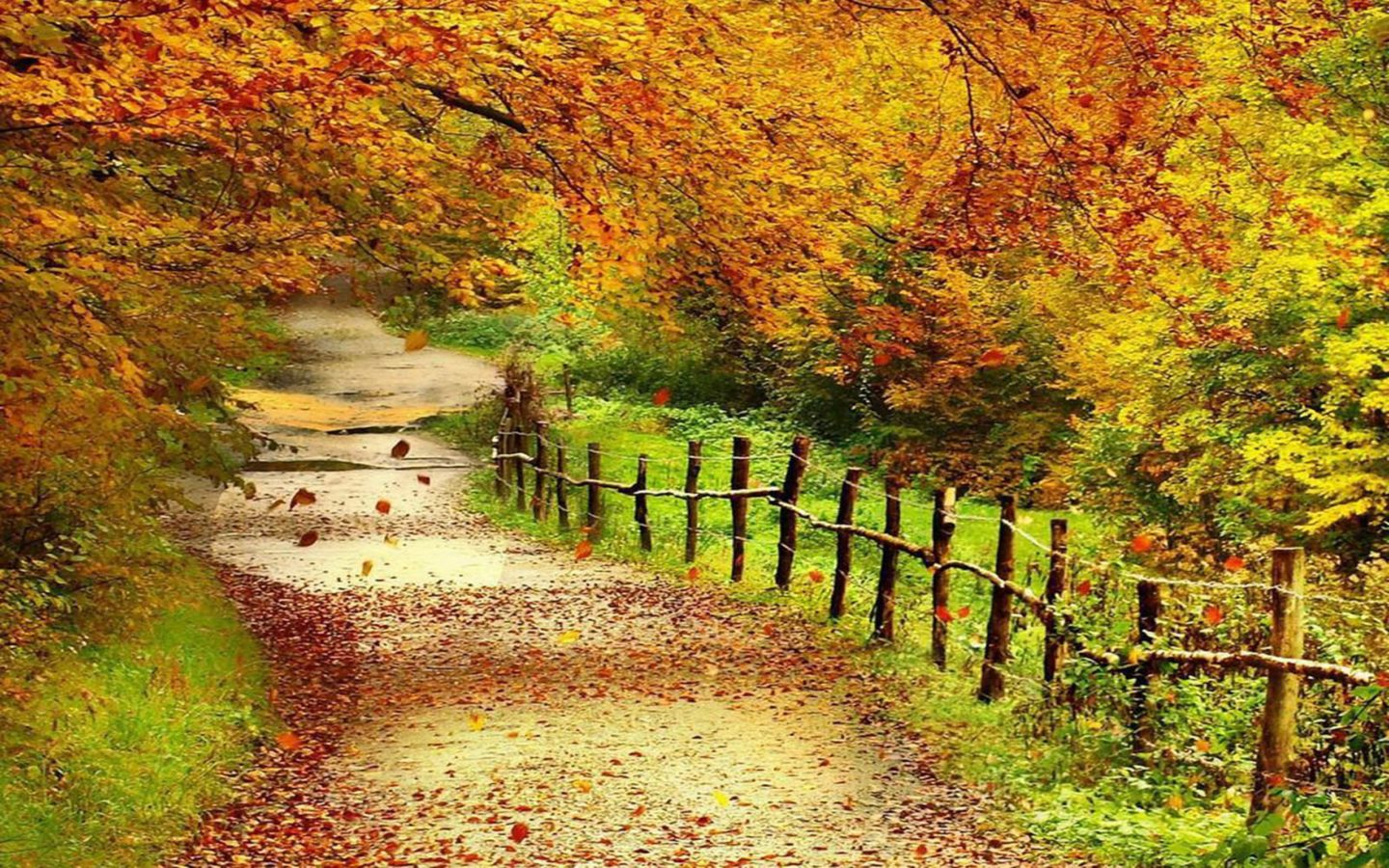 Kentucky Fall Wallpaper Beautiful Autumn Scenery Wallpapers Full Hd Wallpaper