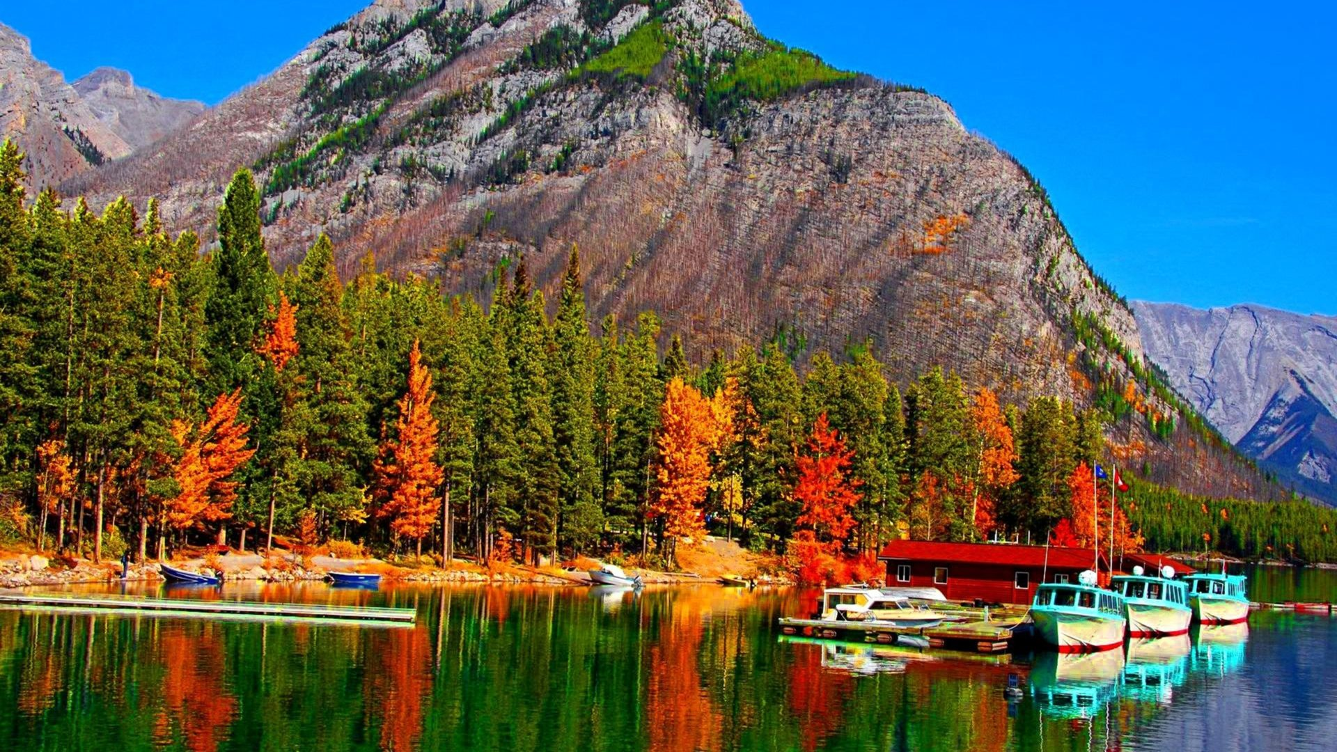 Fall Flowers Wallpaper Free Fall Colors On Lake Banff In Canada Boats Hd Wallpaper