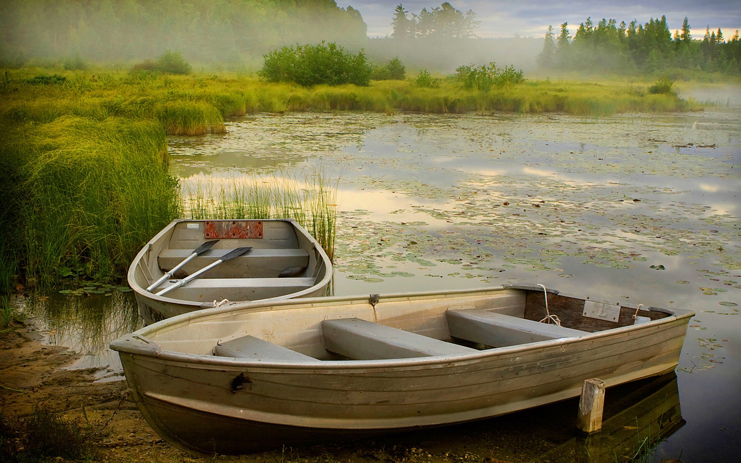 Snow Falling Wallpaper For Ipad Lake Boats Reed In Misty Morning Background Hd Quality