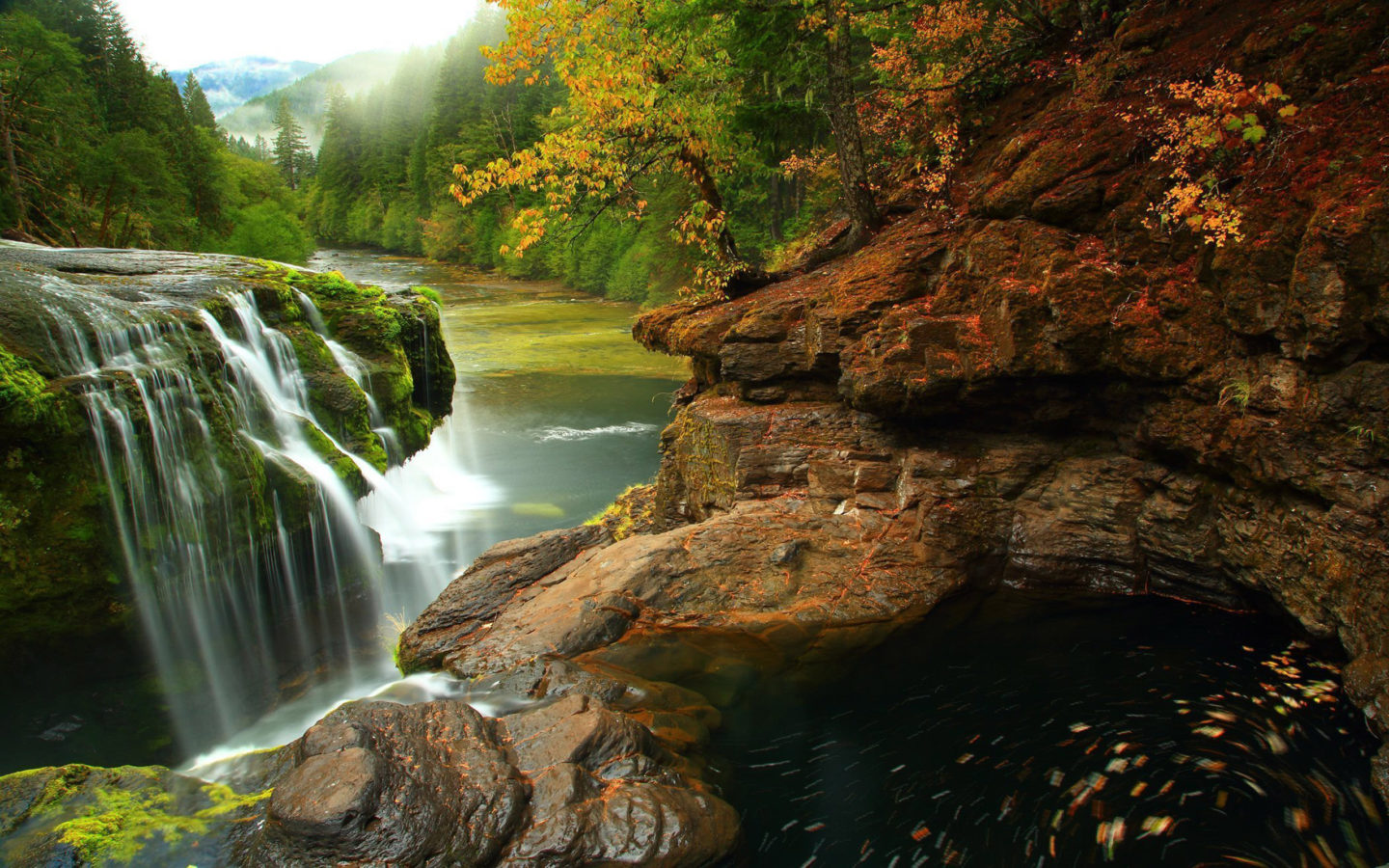 Falls Hd Wallpaper Free Download Lewis River Falls At Gifford Pinchot National Forest