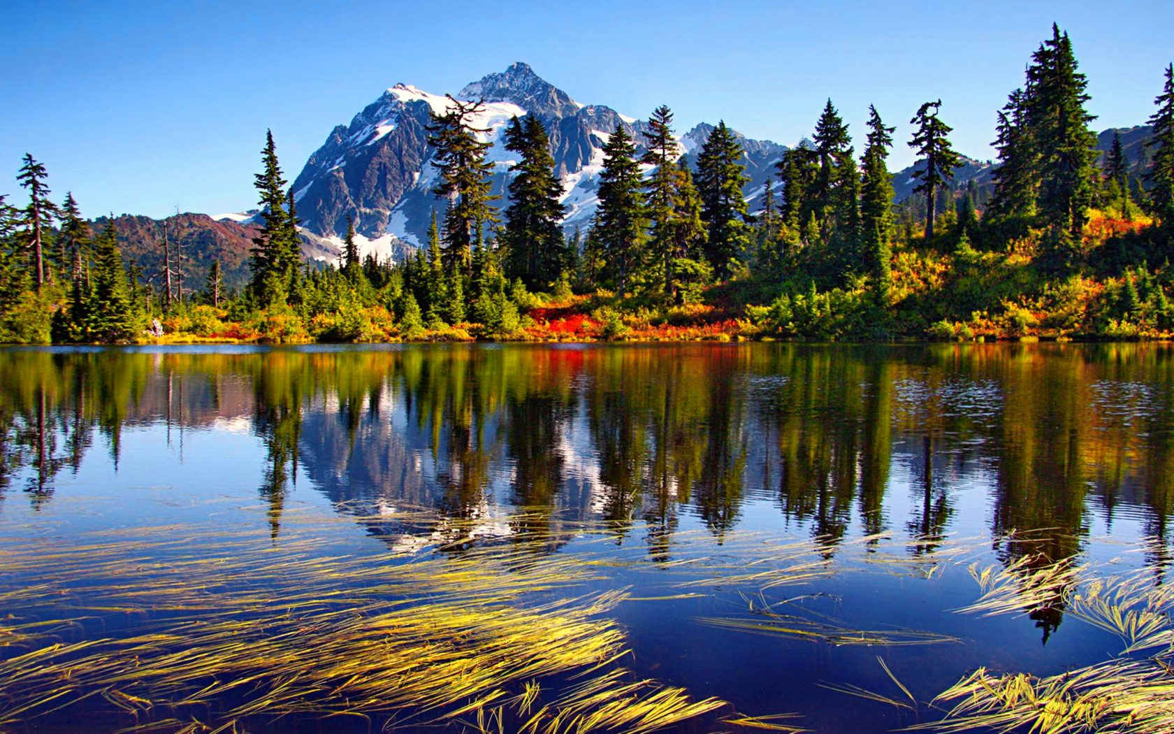 Fall Leaves Wallpaper Free Mount Baker Desktop Background 573343 Wallpapers13 Com