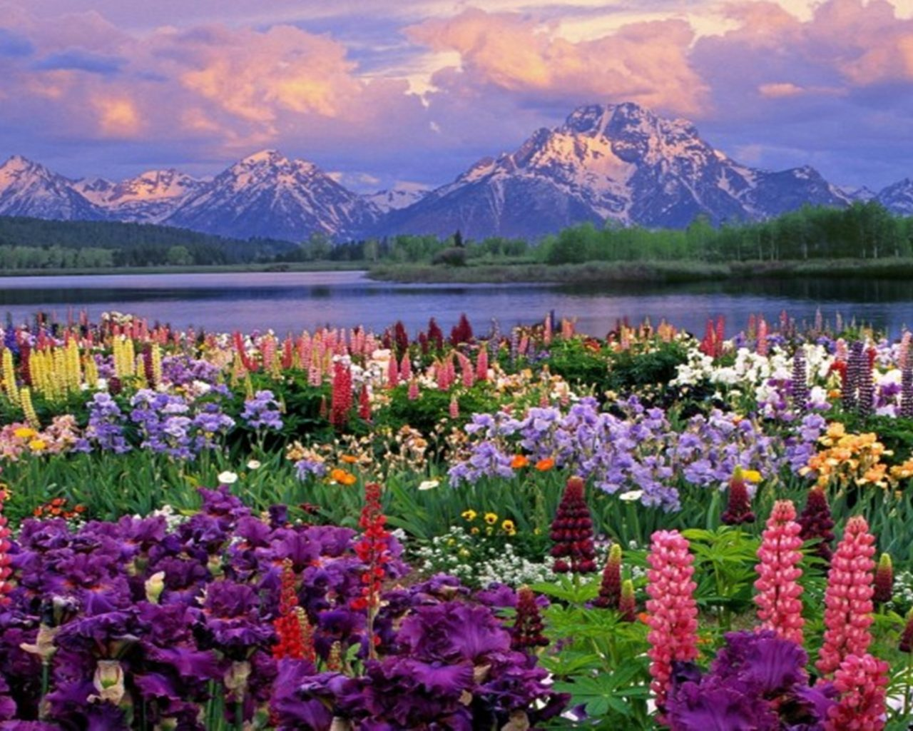 Hd Wallpaper Cars 2015 Mountains Landscapes Flowers Garden Scenic Lakes
