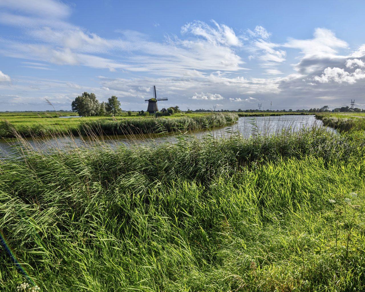 Fall Birds Wallpaper Netherlands Scenery Rivers Sky Edam Grass Nature 411328