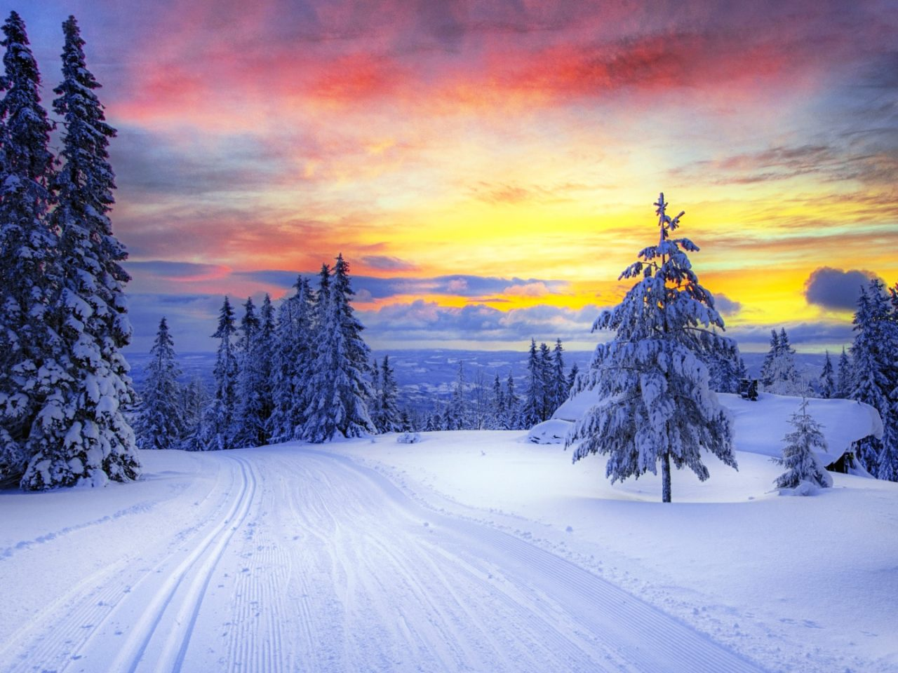 Mountain Iphone Wallpaper Norway Winter Forest Snow Trees 1920x1080 Wallpapers13 Com