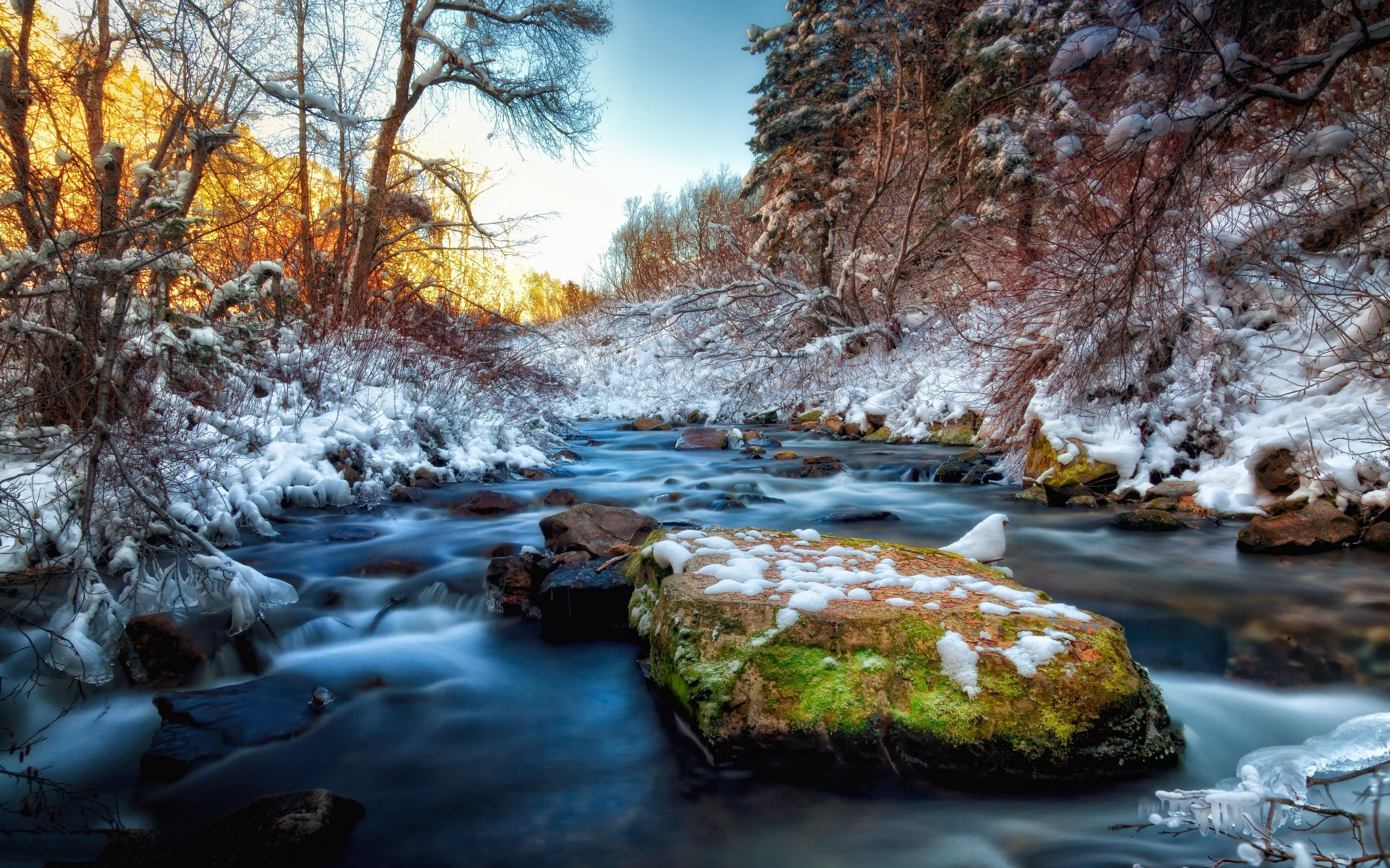 4k Hdr Wallpaper Iphone X River Rocks Snow Stones Water Trees Winter Photography