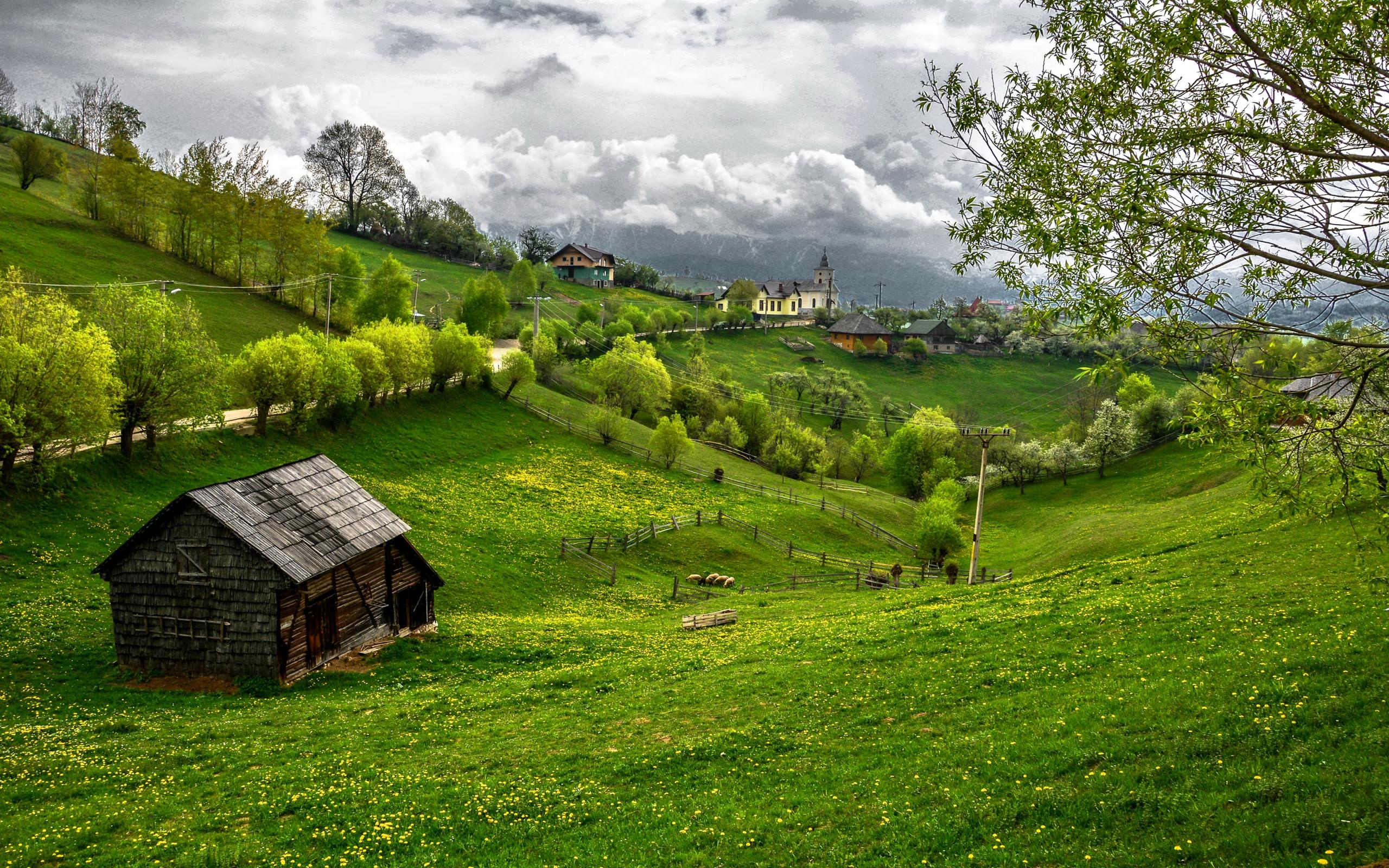 Free Fall Wallpaper 1024x768 Romania Scenery Fields Transylvania Grass Nature 408787