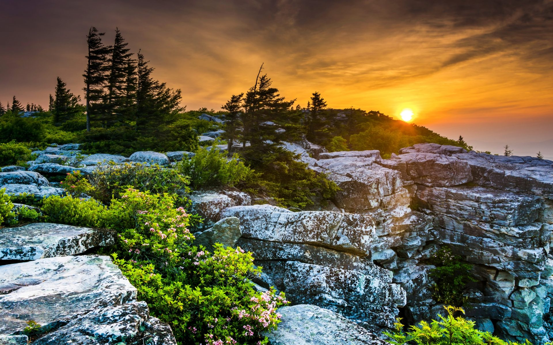 Cars Wallpaper Gif Scenery Usa Sunrises And Sunsets Stones West Virginia Fir