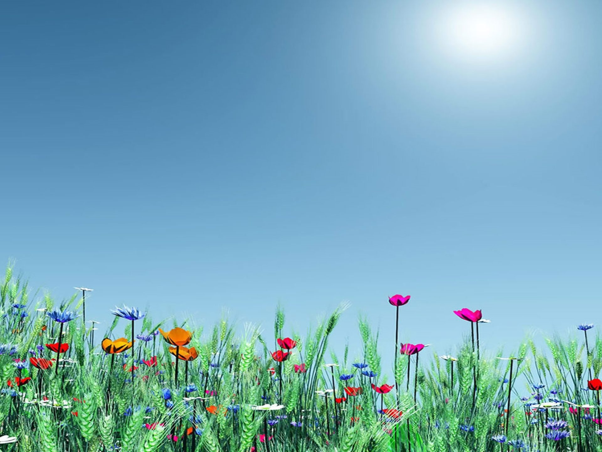 Free 3d Dinosaur Wallpaper Spring Meadow Flowers Poppies Nature Hd Wallpapers