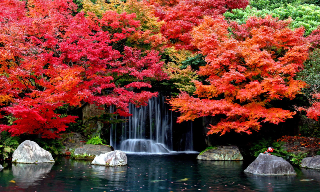Hd Widescreen Fall Wallpaper Autumn Falls Desktop Background Hd Wallpapers 1629361