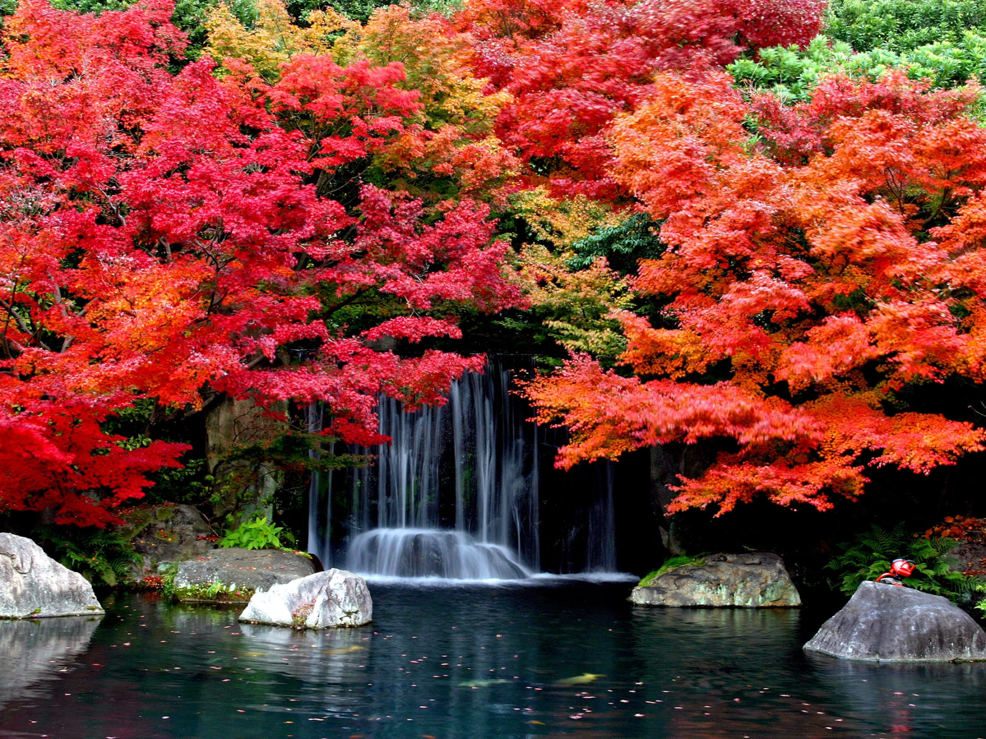 Fall Autumn Hd Wallpaper 1920x1080 Autumn Falls Desktop Background Hd Wallpapers 1629361
