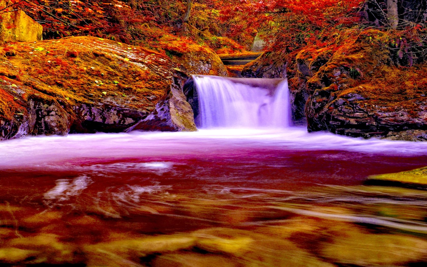 Fall Forest Wallpaper Autumn Forest Falls Nature Waterfall 745340 2560x1600
