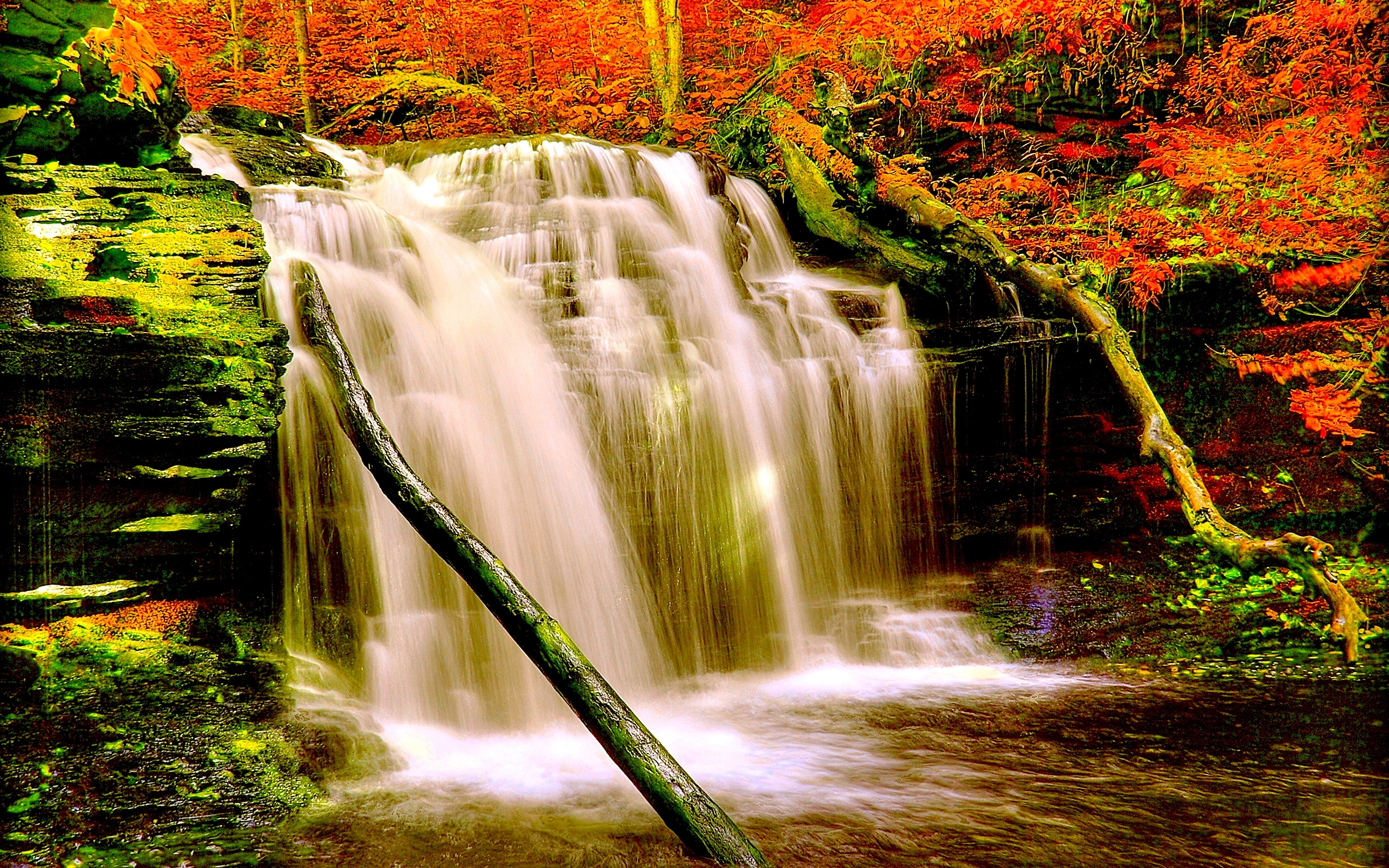 Iphone X Live Wallpaper For Android Autumn Forest Waterfall Nature Aiyumn Hd Background