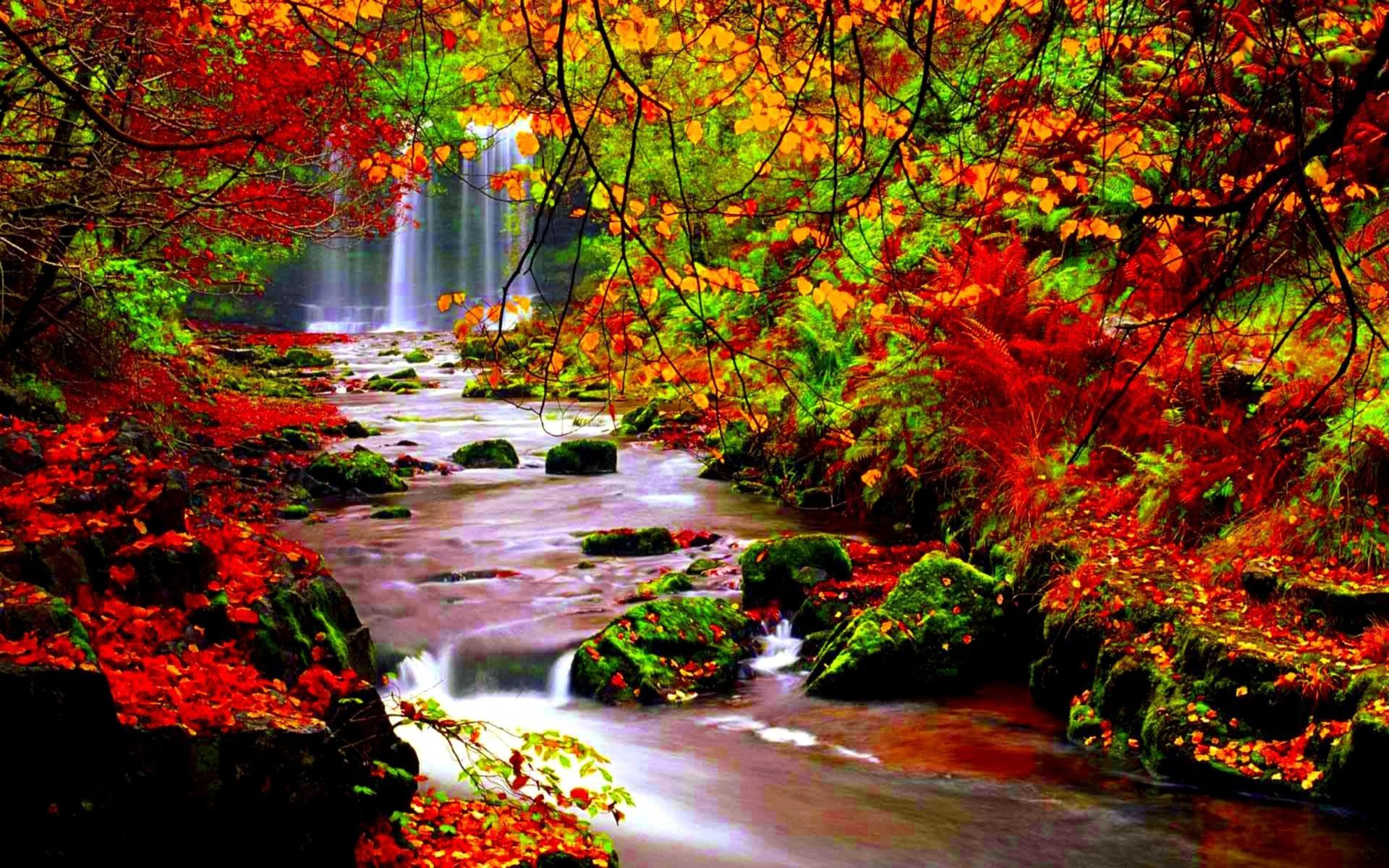 Water Falling Wallpaper Desktop Autumn Scenery Stream River In Autumn Trees With Red