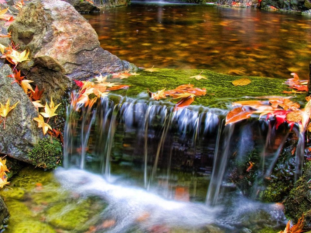 Pretty Fall Iphone Wallpapers Beautiful Butchart Gardens Waterfall Nature Scenery
