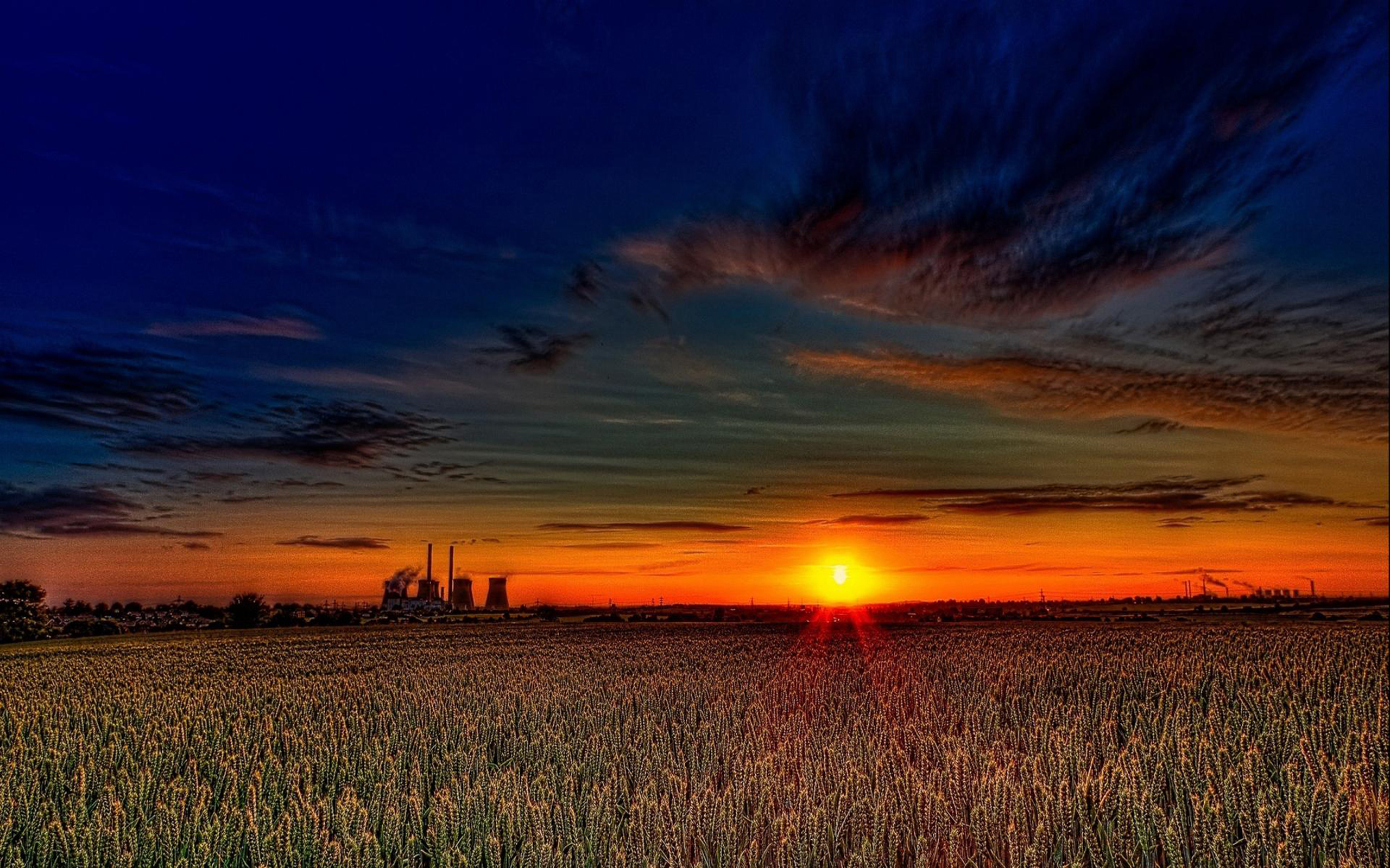 Animated Christmas Tree Wallpaper Beautiful Sunset Over Wheat Fields Hdr 1438167