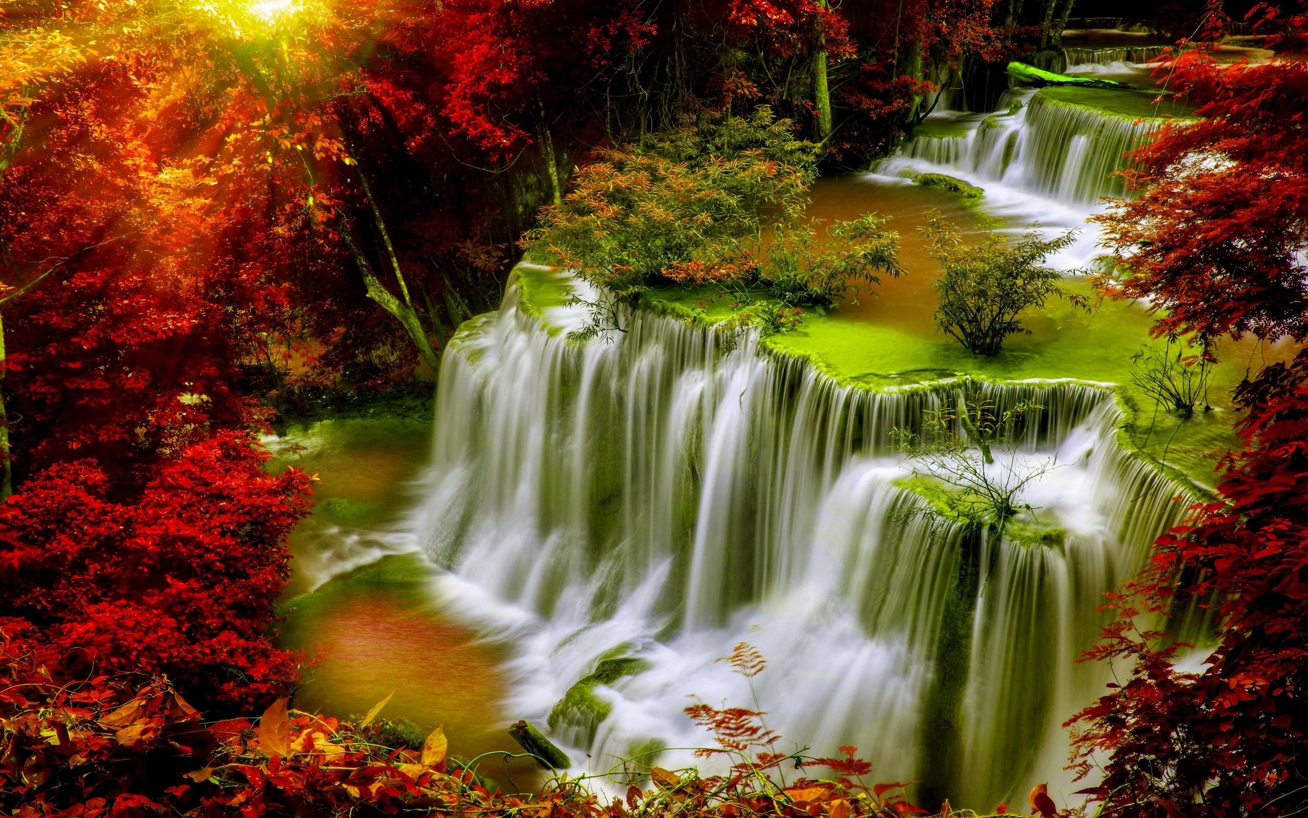 Full Screen Desktop Fall Leaves Wallpaper Cascade Falls Autumn Forest Red Leaves Sunlight Desktop Hd