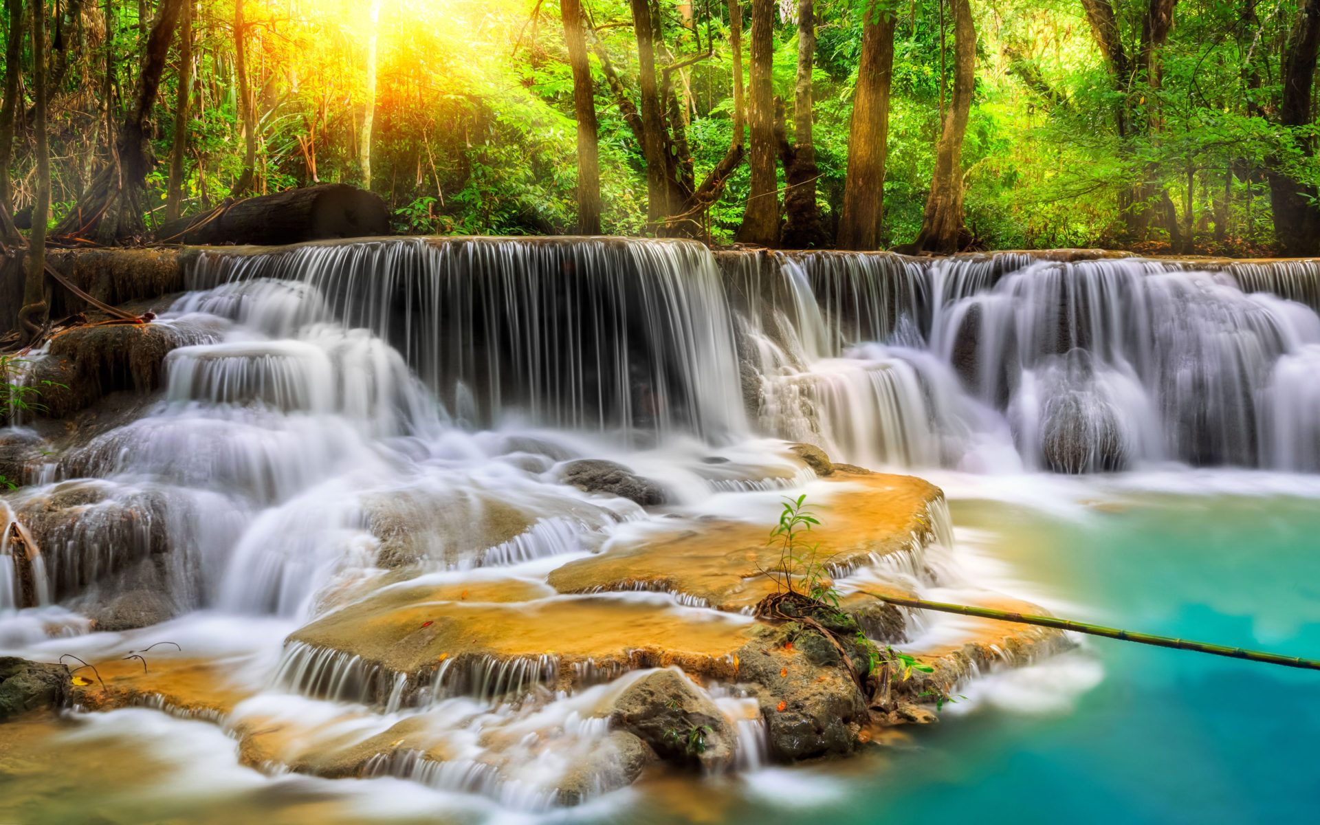Fall Trees Iphone Wallpaper Cascade Waterfall With Exotic Tropical Vegetation Green