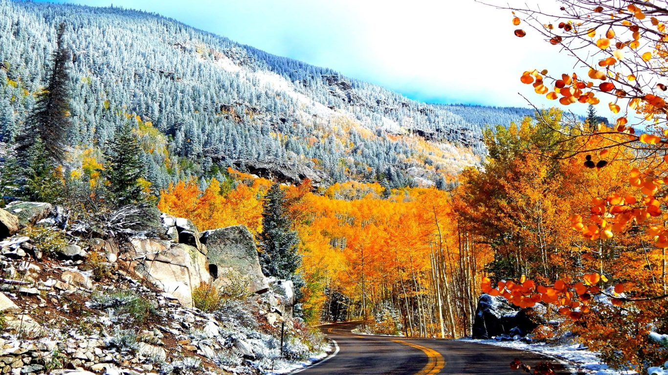 Hd Fall Wallpaper Iphone 5 Colors Of Aspen Colorado Road Fall Trees Hd Wallpaper