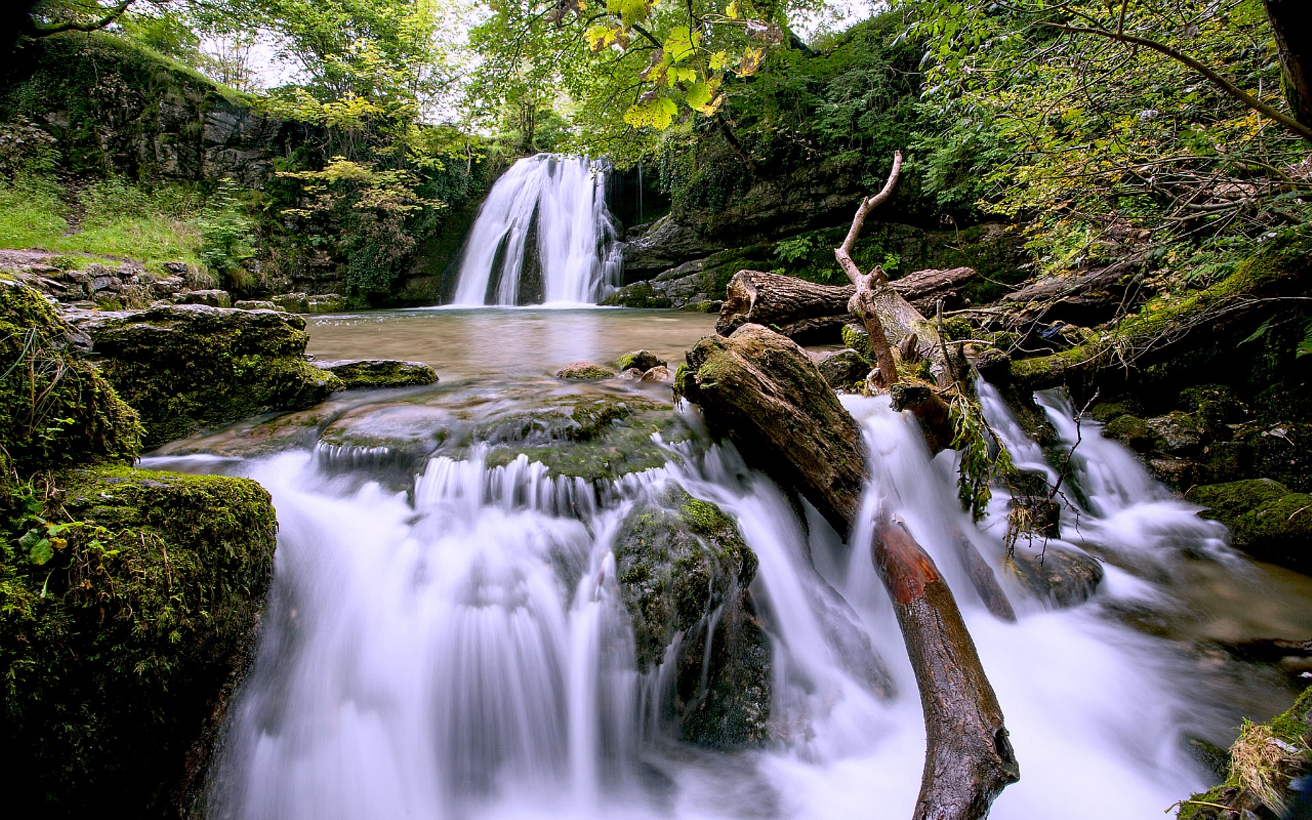 3d Lock Screen Wallpapers Hd Forest Waterfall Pool River Stones Green Moss Wood