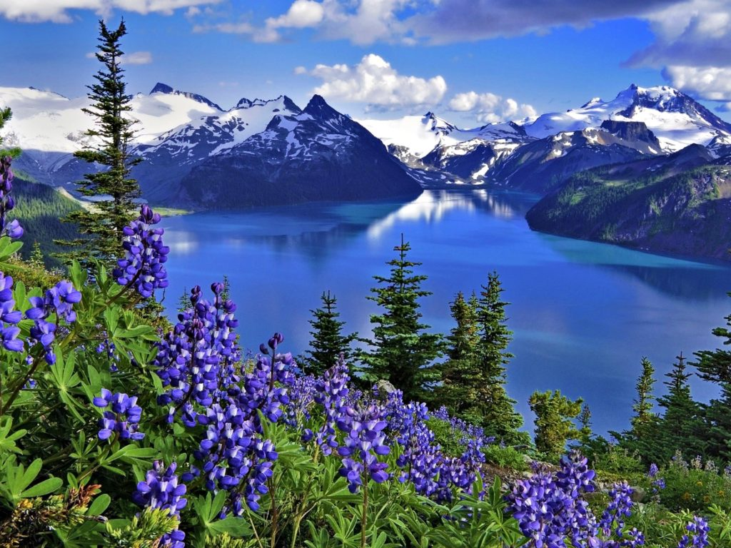 Beautiful Cars Hd Wallpapers Download Hd Wallpaper Landscape Nature Lake Mountains Flowers