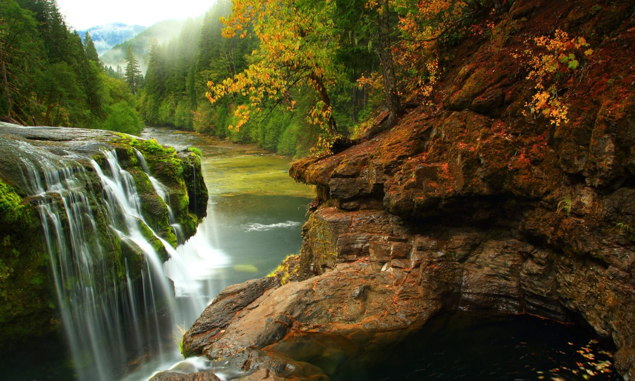 Fall Flowers Wallpaper Hd Lewis River Falls In Gifford Pichot Forest In Washington