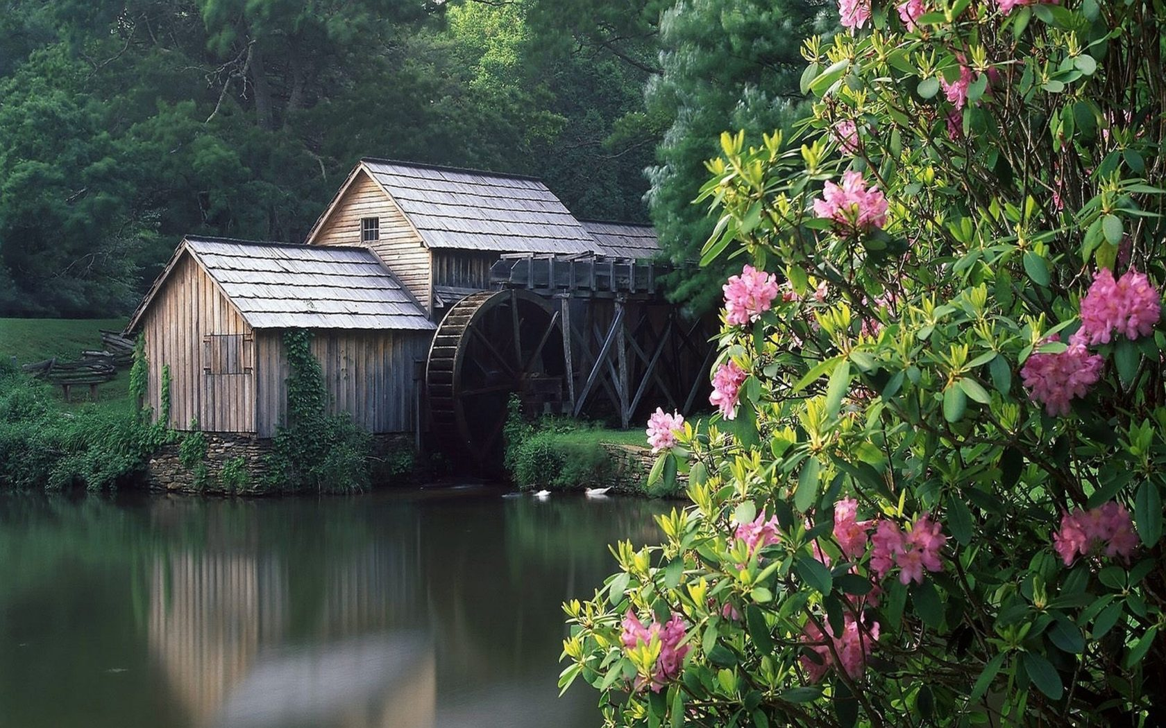 Fall Moving Wallpaper Lovely Grist Mill 295512 Wallpapers13 Com