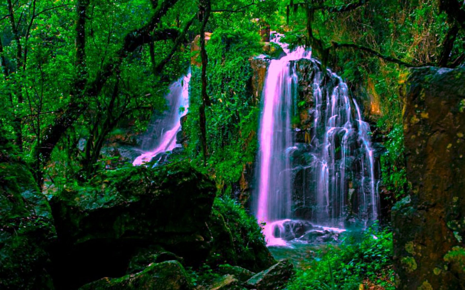 Imaginary Wallpapers Hd Magical Forest Waterfall Wide Wallpaper 552228