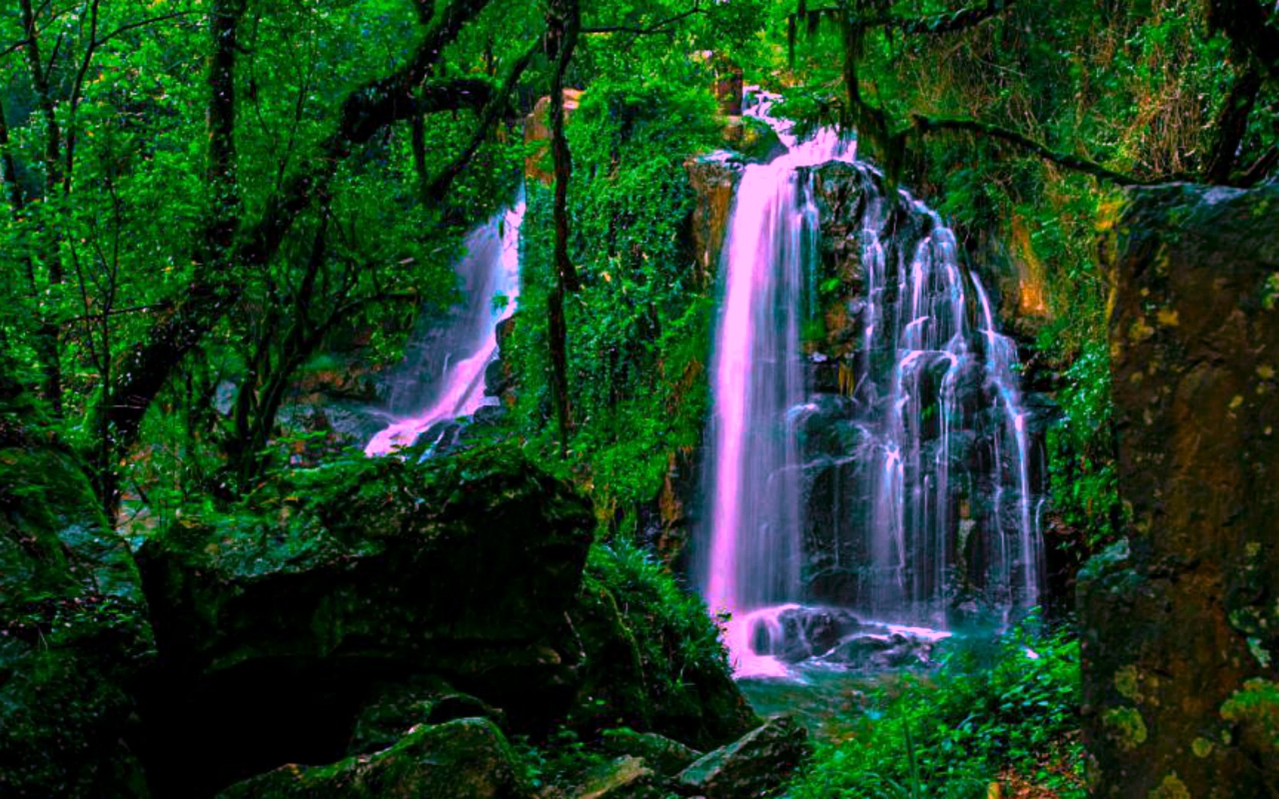 Fall Wallpaper For Computer Screen Magical Forest Waterfall Wide Wallpaper 552228