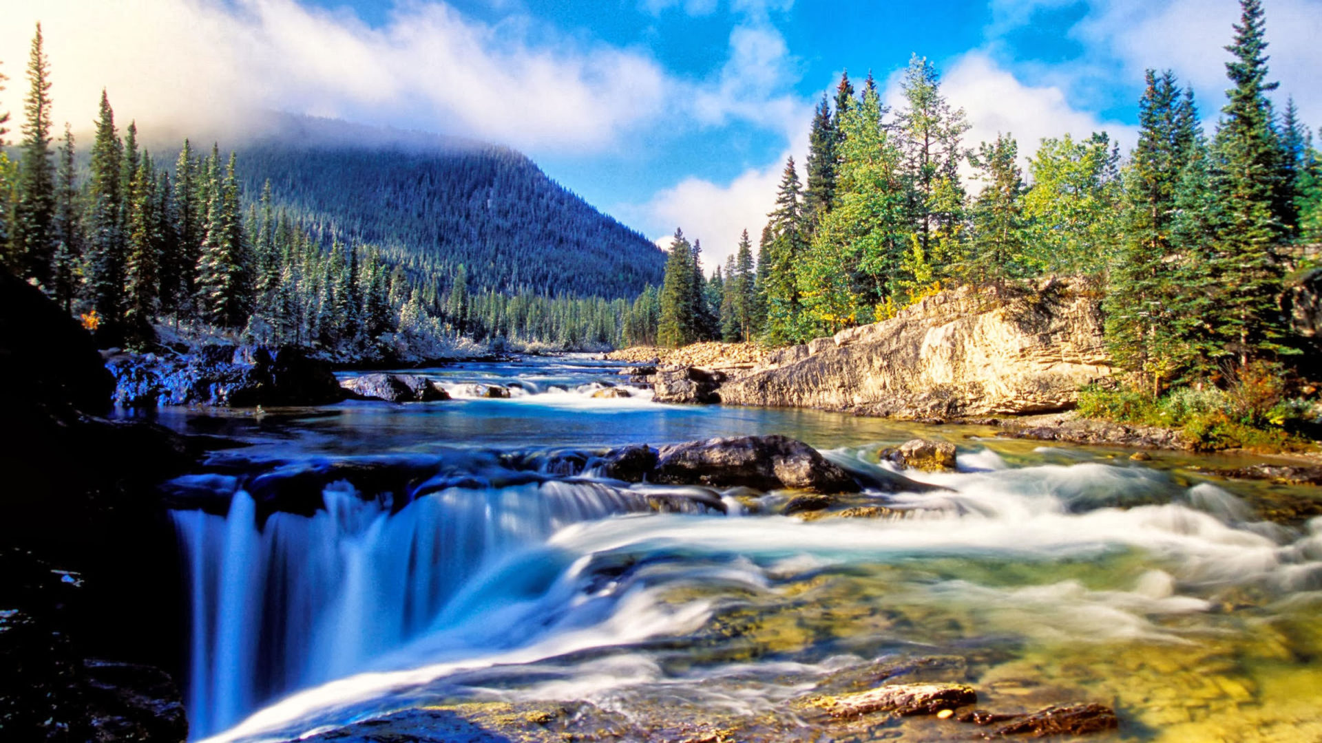 Bing Hd Wallpaper Fall Nature Mountain Dense Spruce Forest River Rock Waterfall
