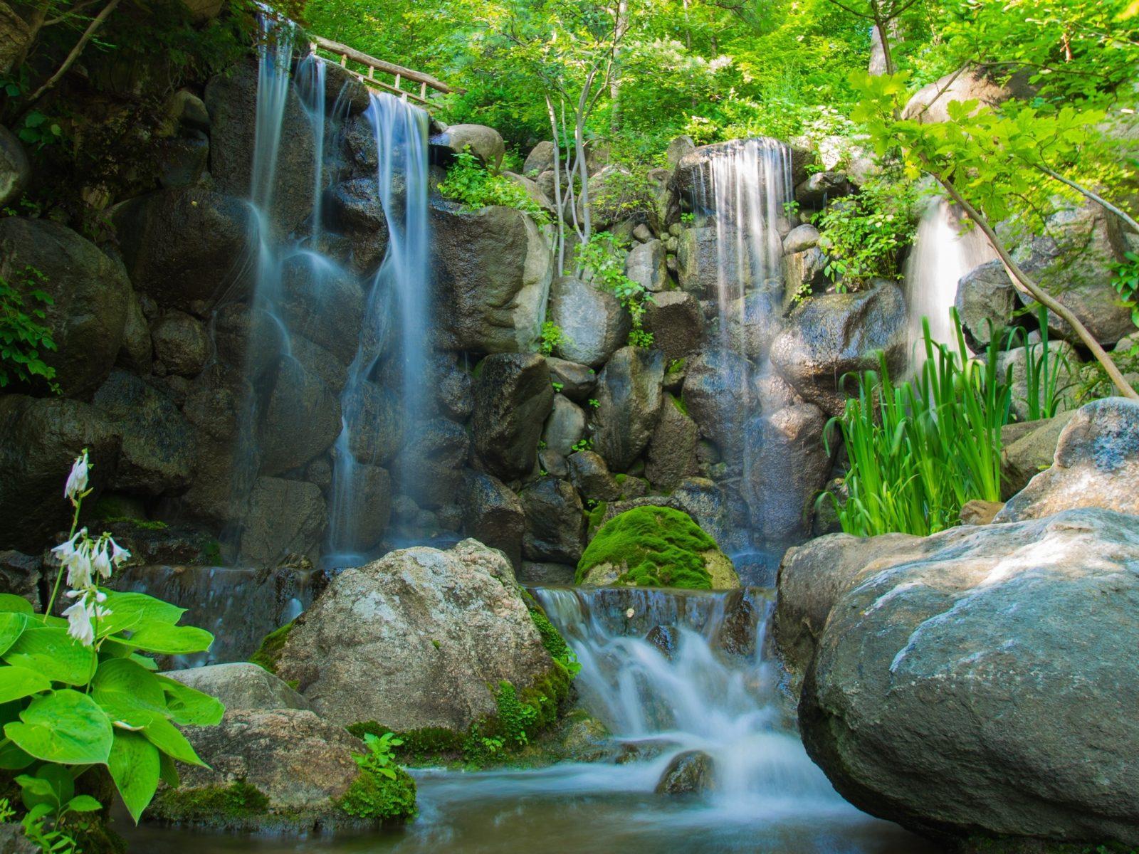 Havasu Falls Wallpaper Waterfall River Rocks Plants Trees Nature 2560x1600