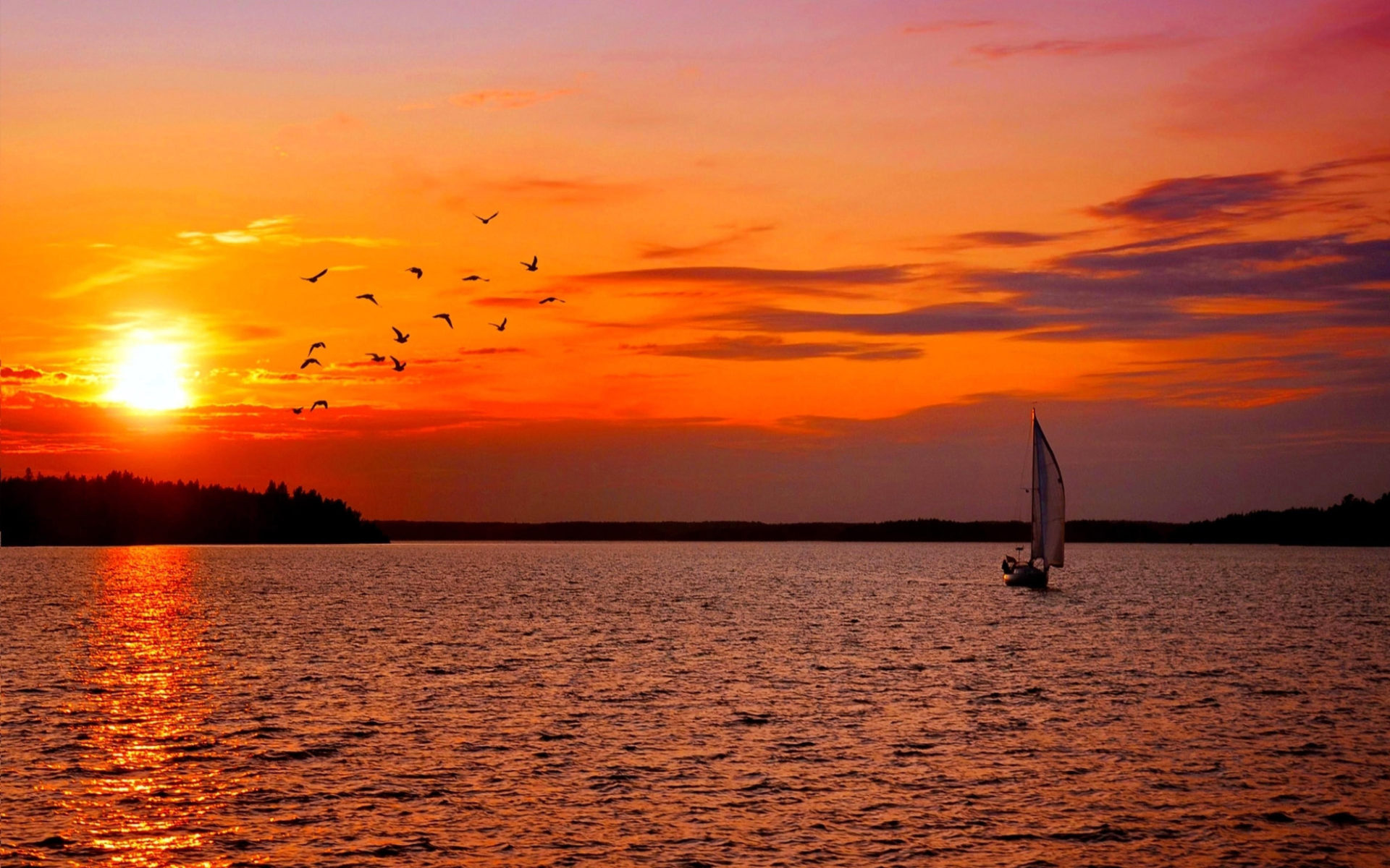 Quotes Lock Screen Wallpaper Sunset Sailing Birds Sweden Boat Nature Ultra 2560x1600 Hd