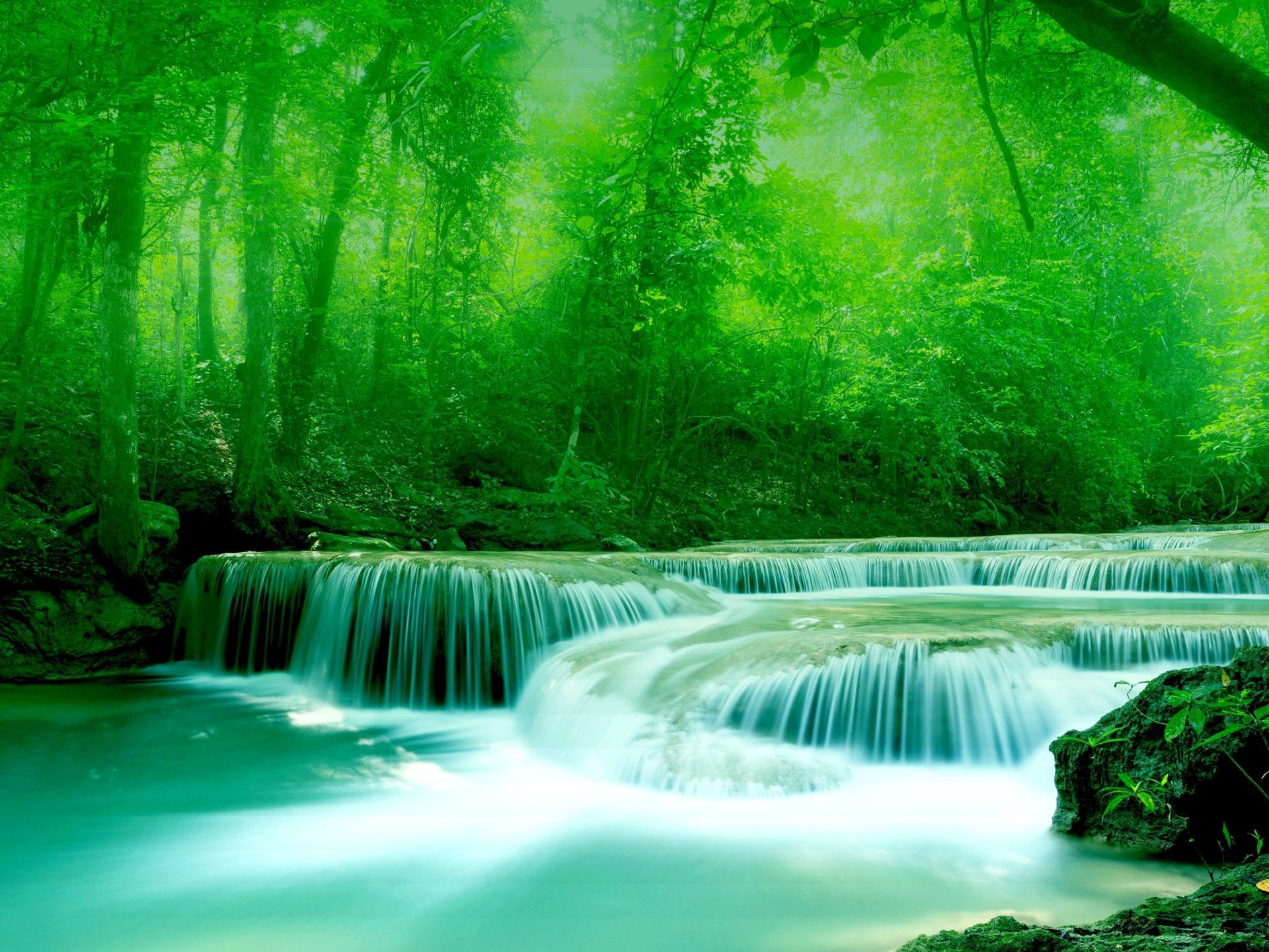 Niagara Falls Waterfall Wallpaper Wallpaper River Water Rocks Trees Greenery Free