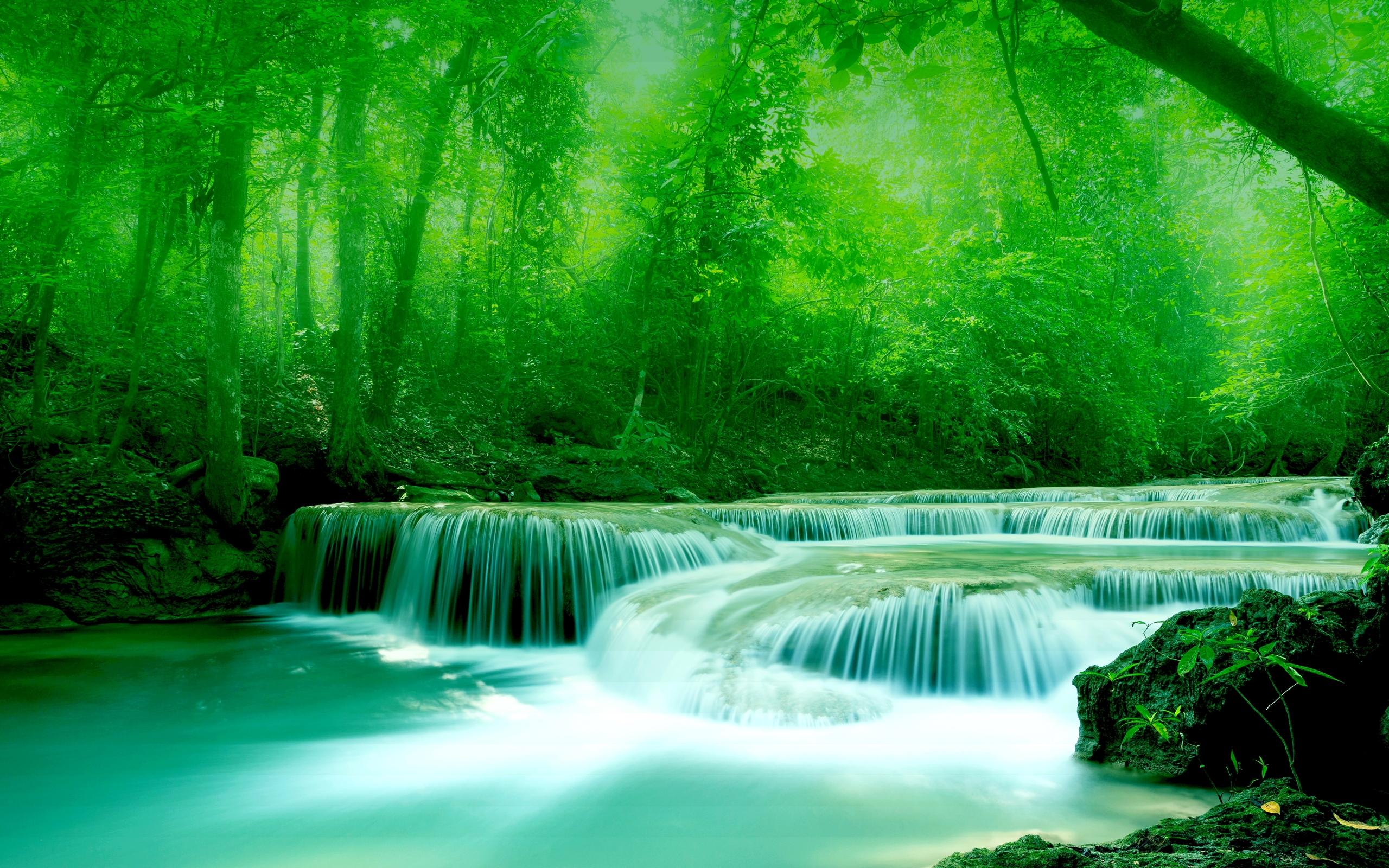 Niagara Falls Full Hd Wallpaper Wallpaper River Water Rocks Trees Greenery Free