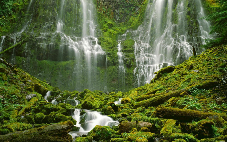 Kuang Si Falls Hd Wallpaper Water Nature Trees Waterfalls Desktop Hd Wallpaper 305871