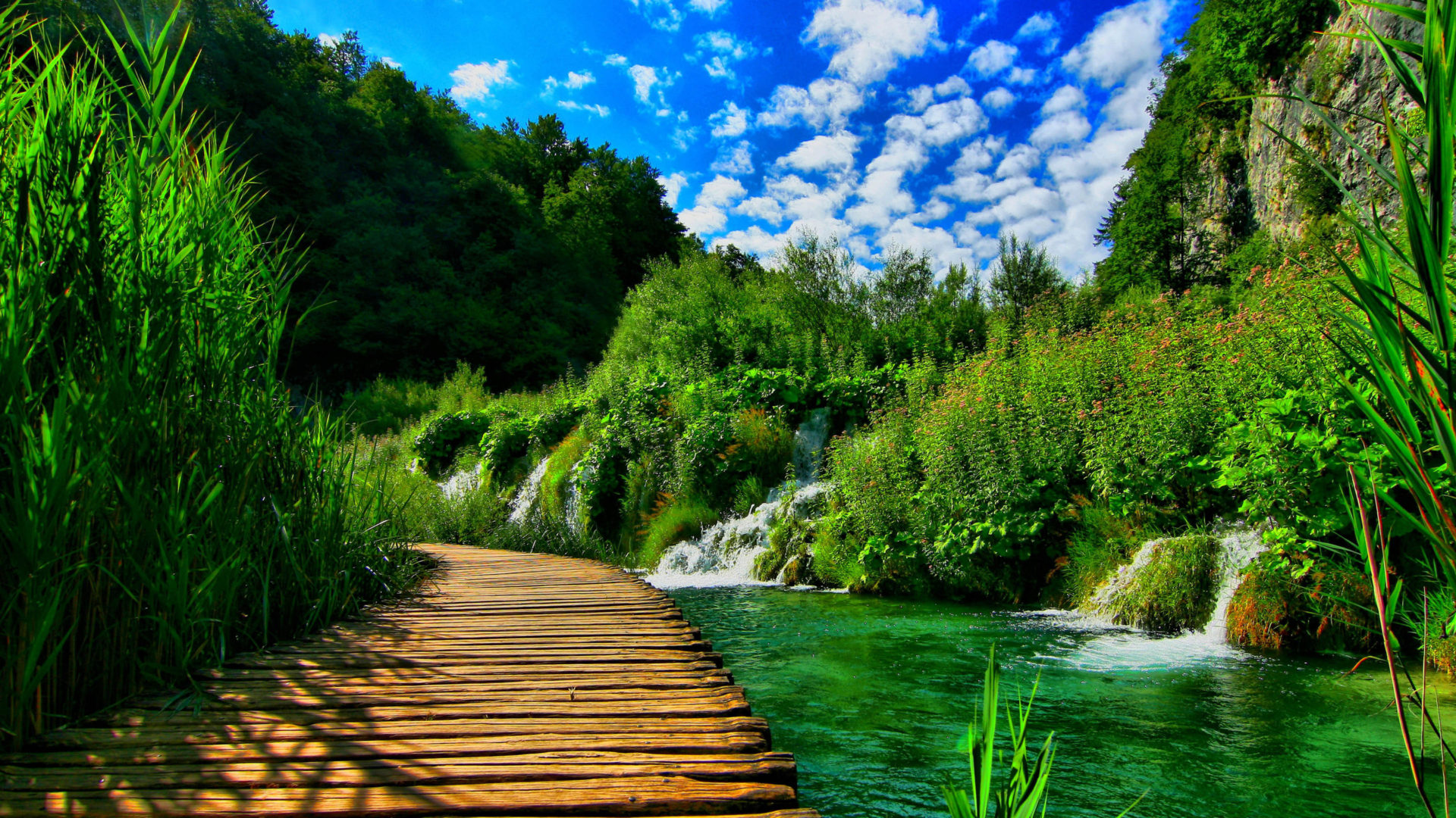 How To Use Gif As Wallpaper Iphone X Wooden Pontoon Bridge Nature Landscape Hd Wallpapers